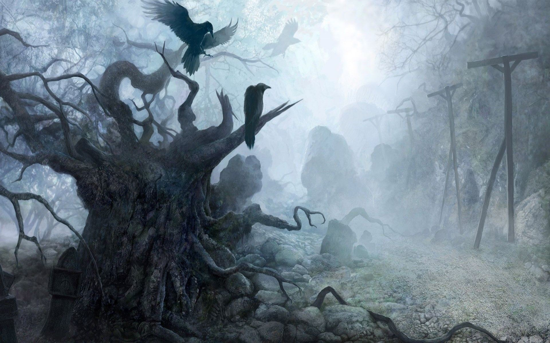 Res: 1920x1200, full size Haunted Forest Wallpaper  for iphone 7