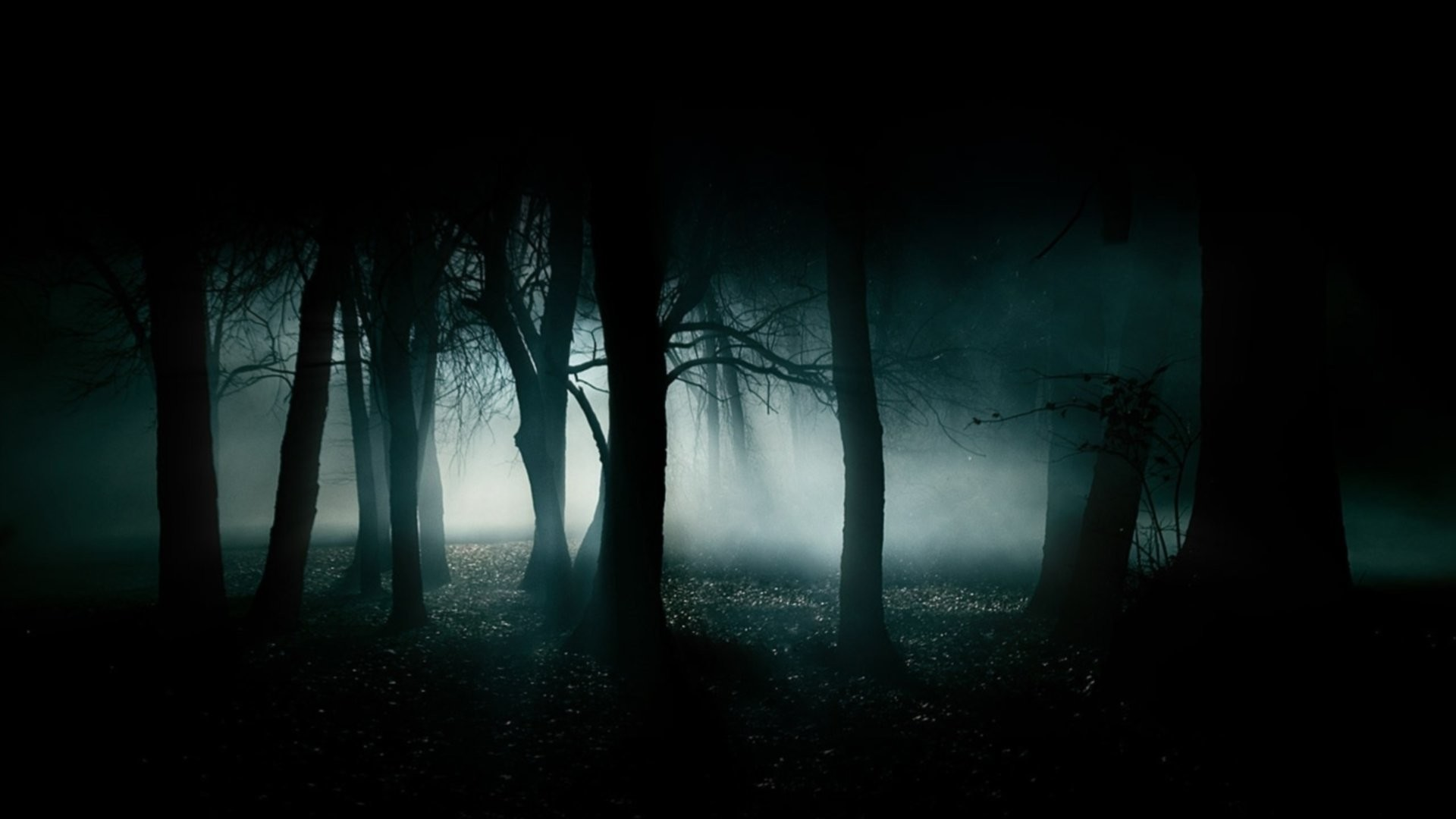 Res: 1920x1080, haunted forest 909548