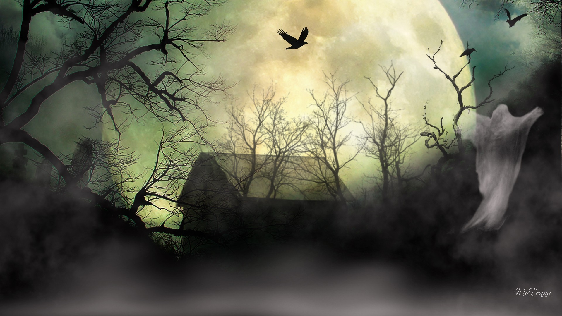 Res: 1920x1080, Horrible Tag - Dreadful Mist Spooky Weird Halloween Uncommon Trees Full  Barn Quaint Enigmatic Fearsome Horrible