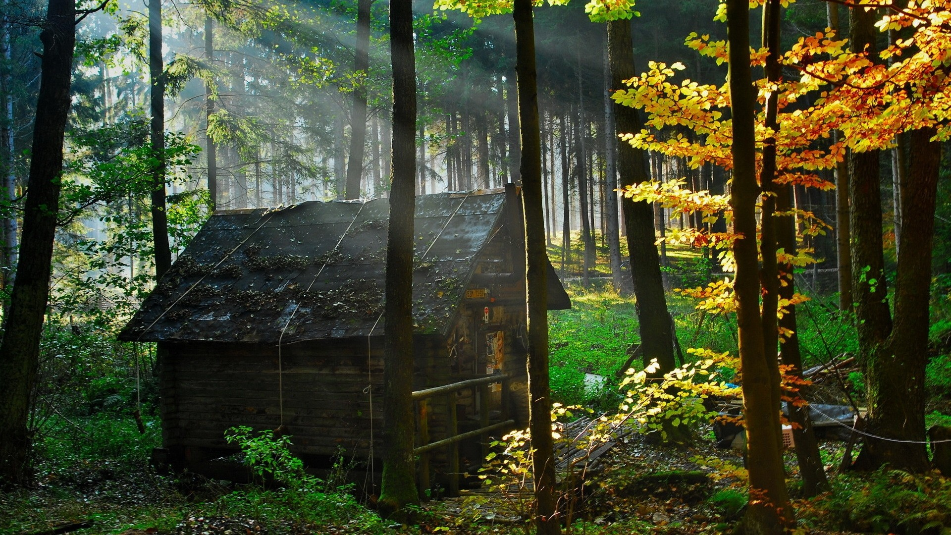 Res: 1920x1080, Mansion Wallpaper House Savers Forest Haunted Chainimage  Desktop  Pc And Mac