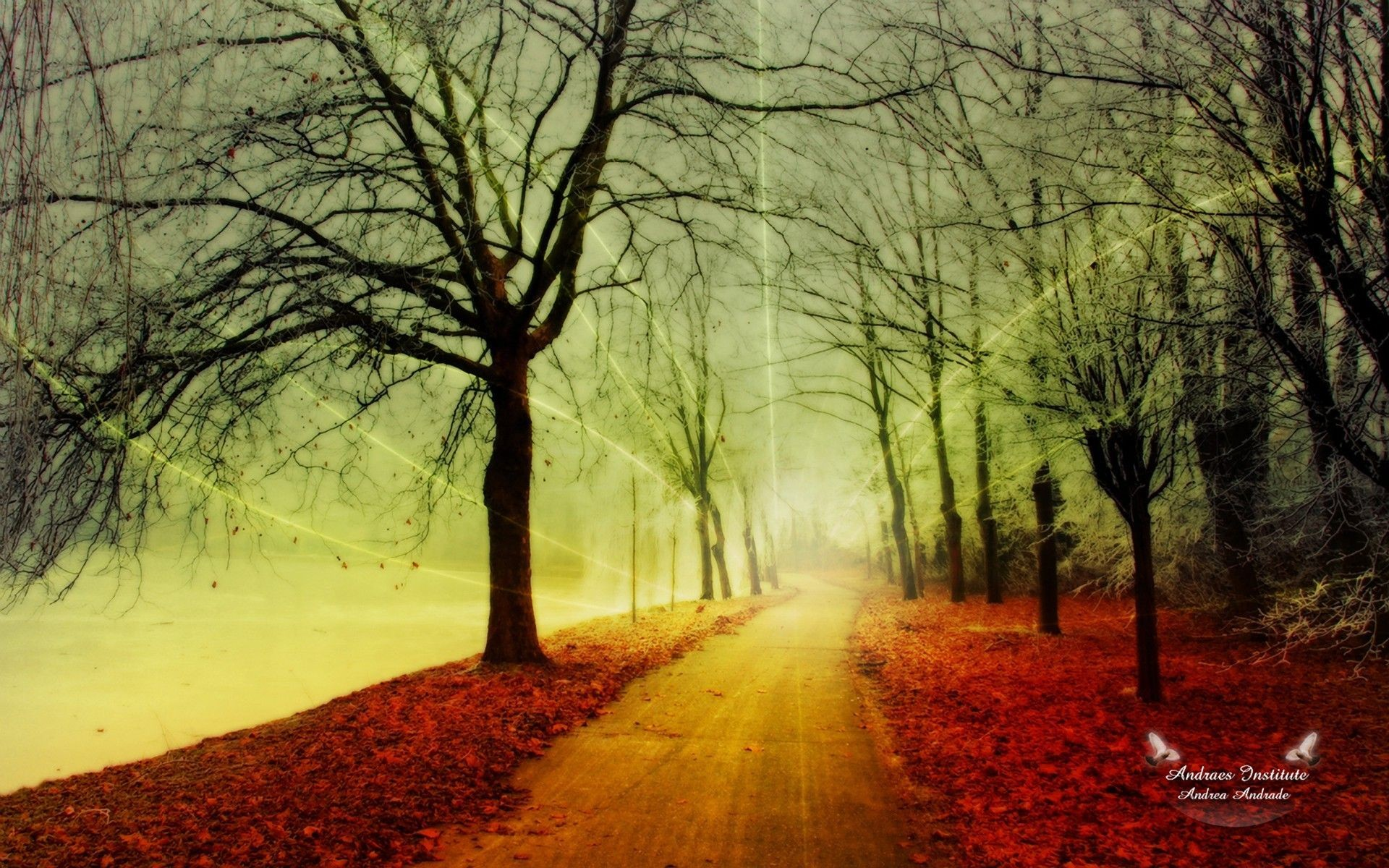 Res: 1920x1200, High Resolution Beauty Cool Art Wallpaper Full Size ... - HD Wallpapers