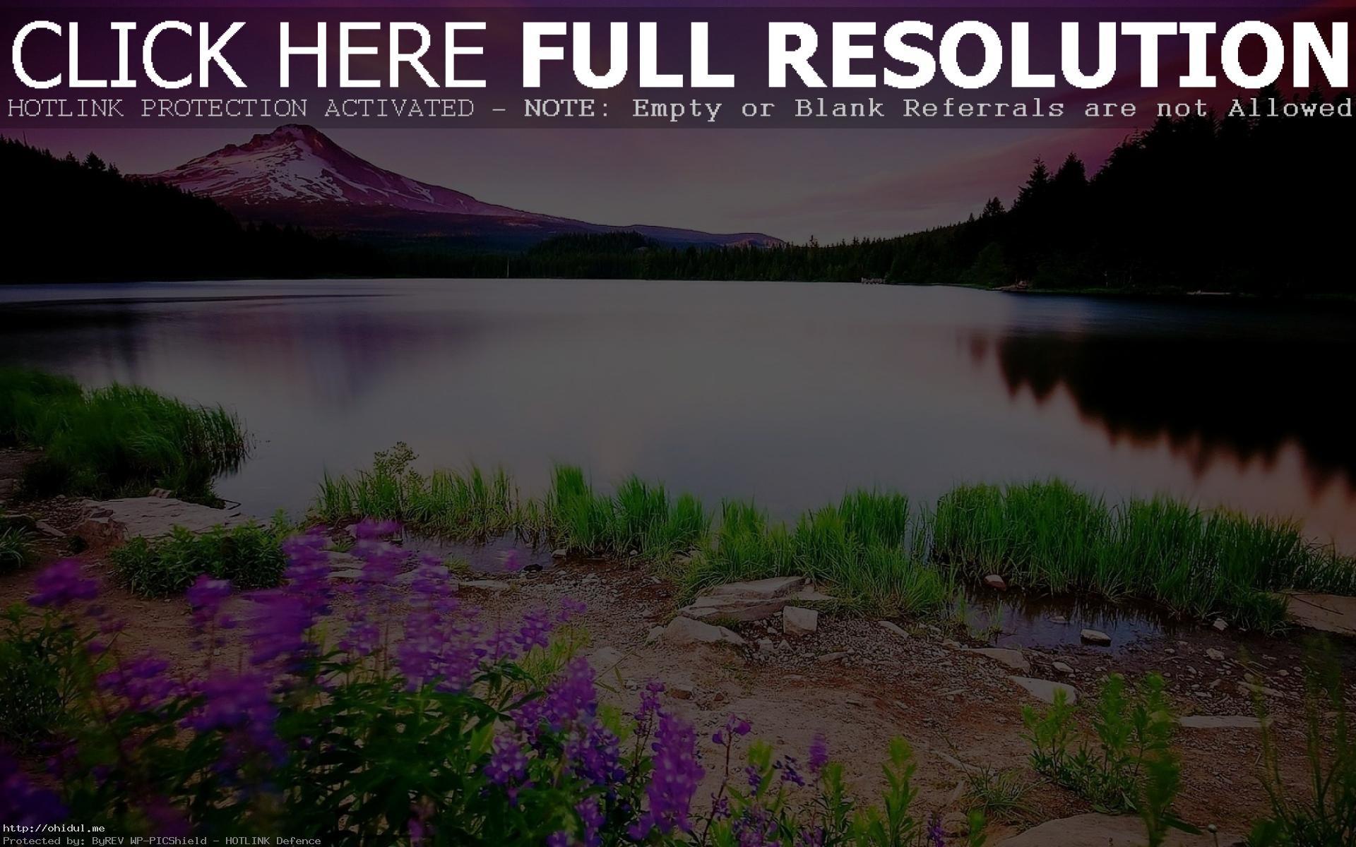Res: 1920x1200, ... Natural Beauty Nature HD Wallpaper No 0093  Magnificent Image  ...