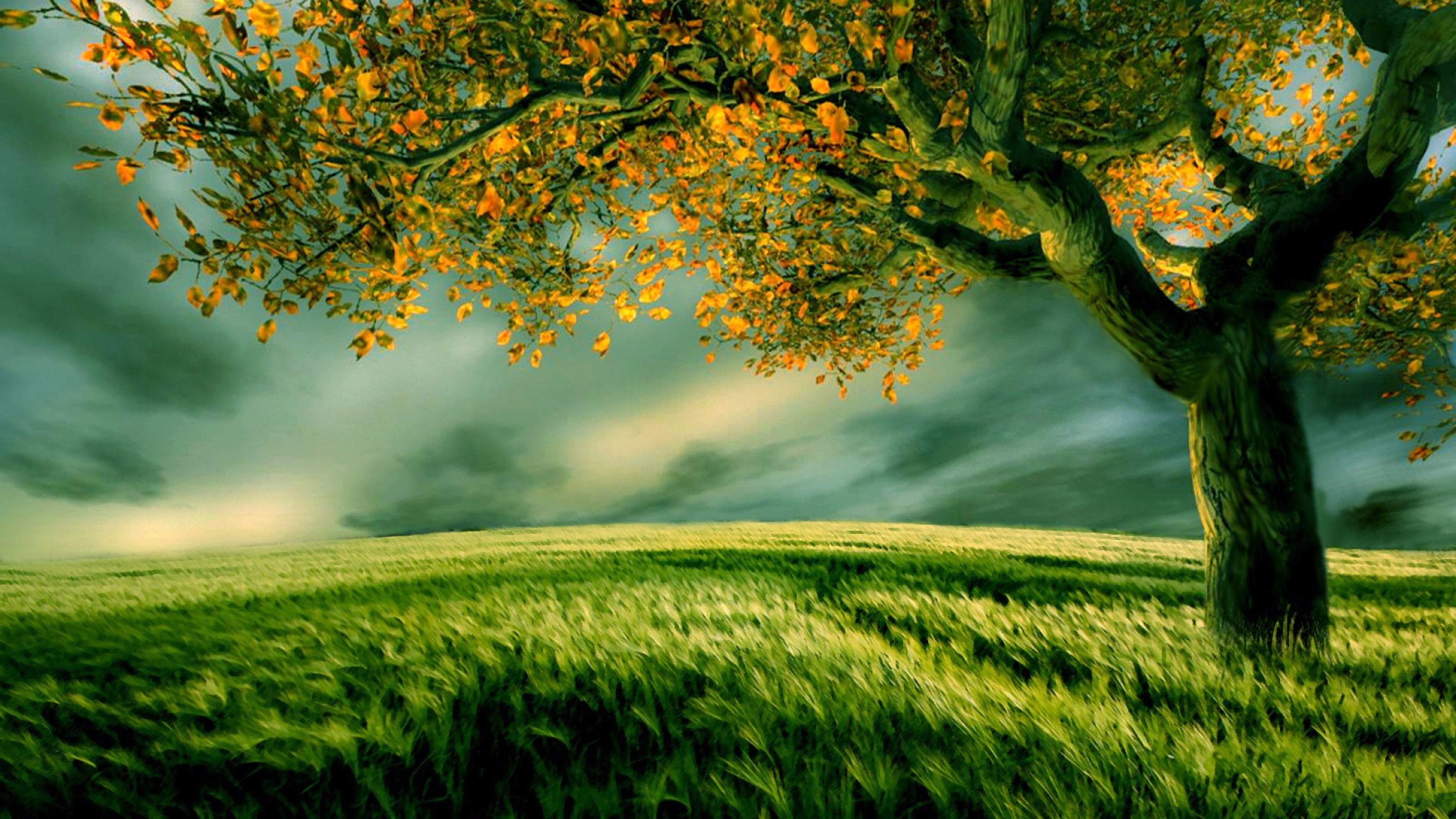 Res: 3840x2160, Top Beauty Nature 4K Wallpaper
