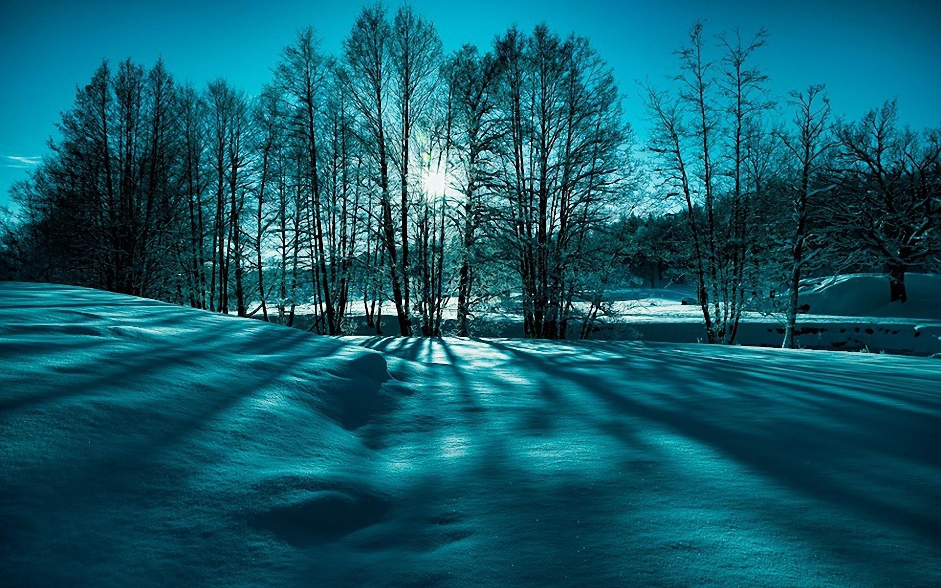 Res: 1920x1200, Landscape snow trees winter nature beauty wallpaper      73638    WallpaperUP