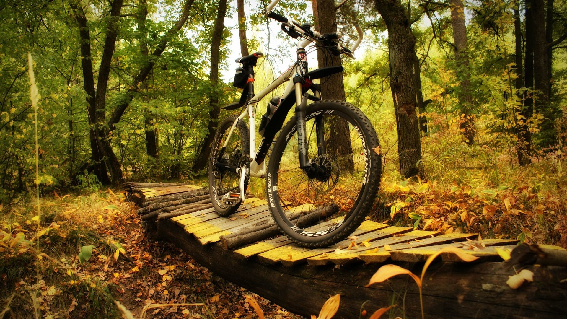 Res: 1920x1080, hd wallpaper sport bike forest trek on the pictures