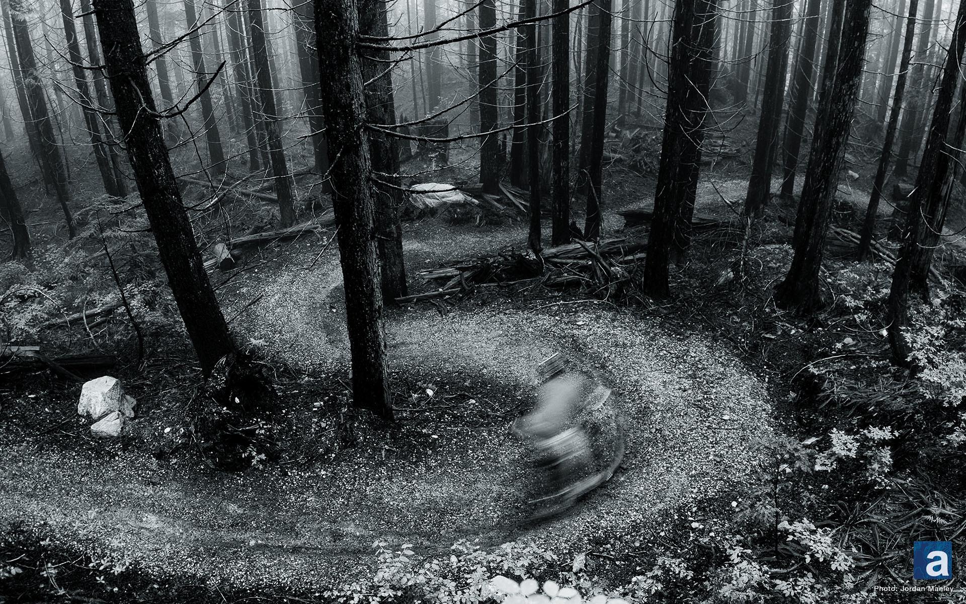 Res: 1920x1200, Top Trek Bicycle Images