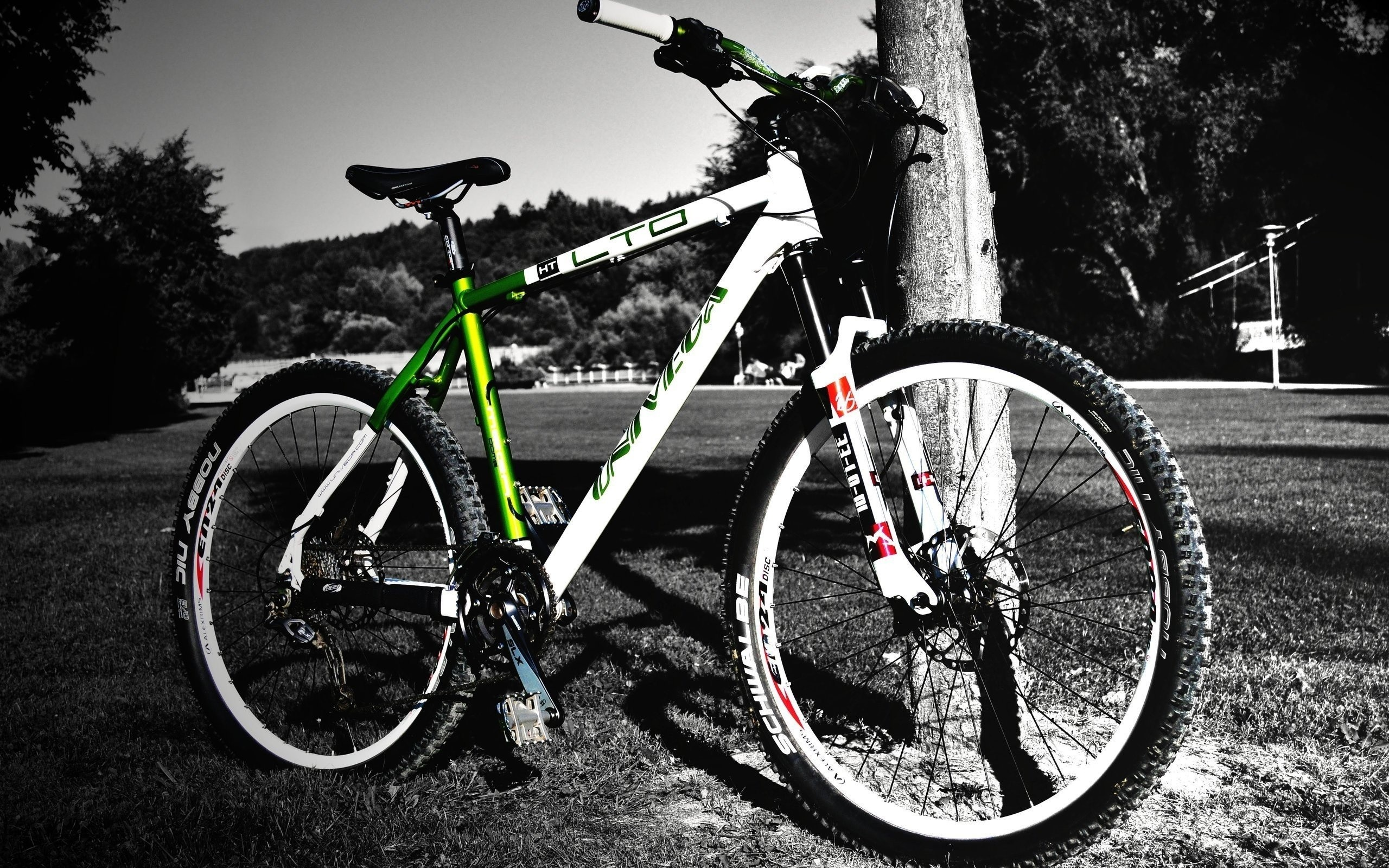 Res: 2560x1600, Road/Mountain Bicycles