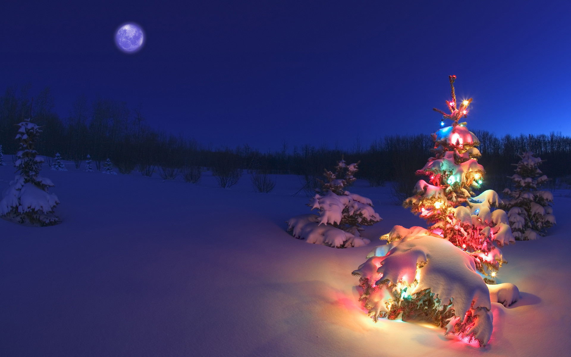 Res: 1920x1200, Tags: Happy Holidays 2012