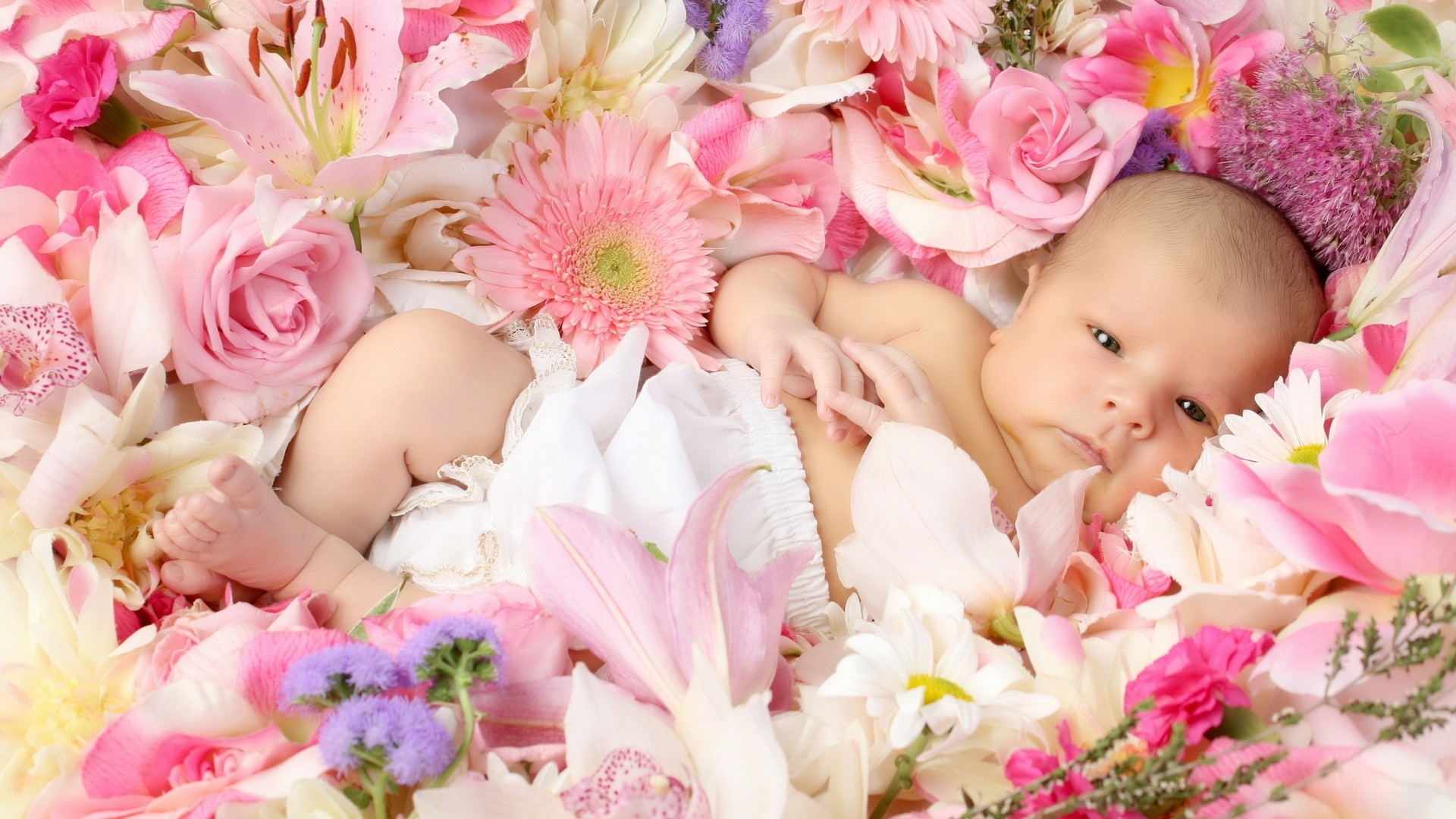 Res: 1920x1080, Baby With Flower Wallpaper Wallpaper