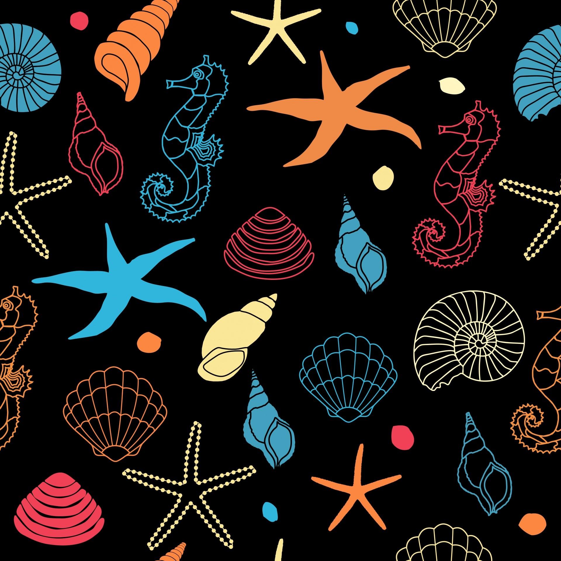 Res: 1920x1920, Seahorse, Starfish Wallpaper