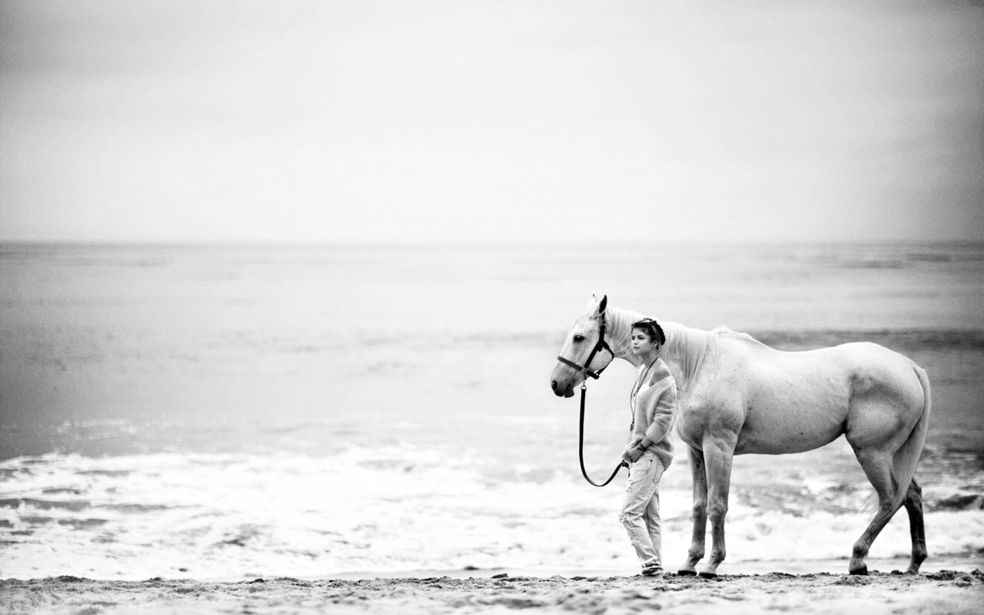 Res: 1920x1200, horse, white, people, sea, sand, seascape, windows, abstract hd wallpaper,  female, wallpapers, sky, download, mood, women, children, black, beaches,  ...