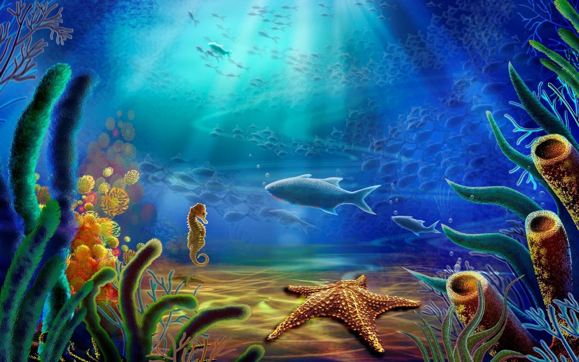Res: 1920x1200, Fish And Sea Horse And Starfish Wallpaper