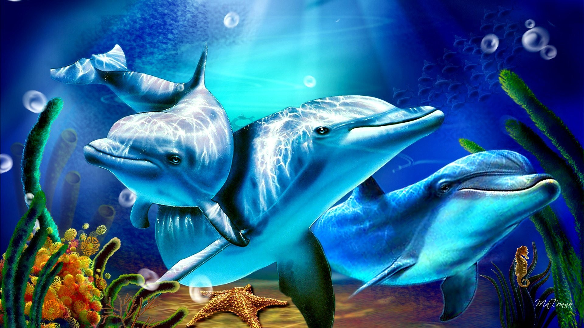 Res: 1920x1080, Tiere - Delfin Tiere Künstlerisch Digitale Kunst Blase Seestern Seahorse  Wallpaper