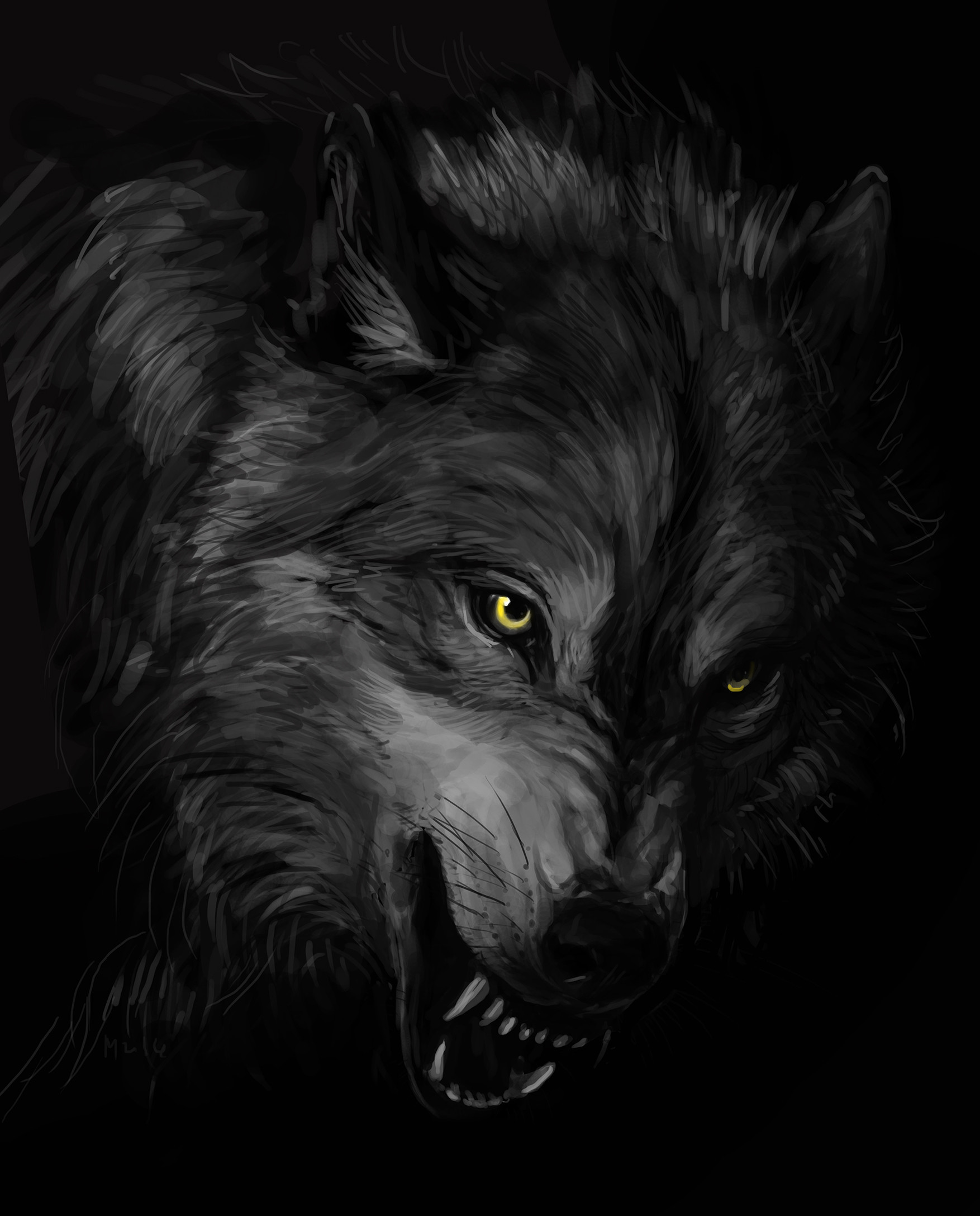 Dark Wolf Wallpapers Hd Wallpaper Collections 4kwallpaper Wiki