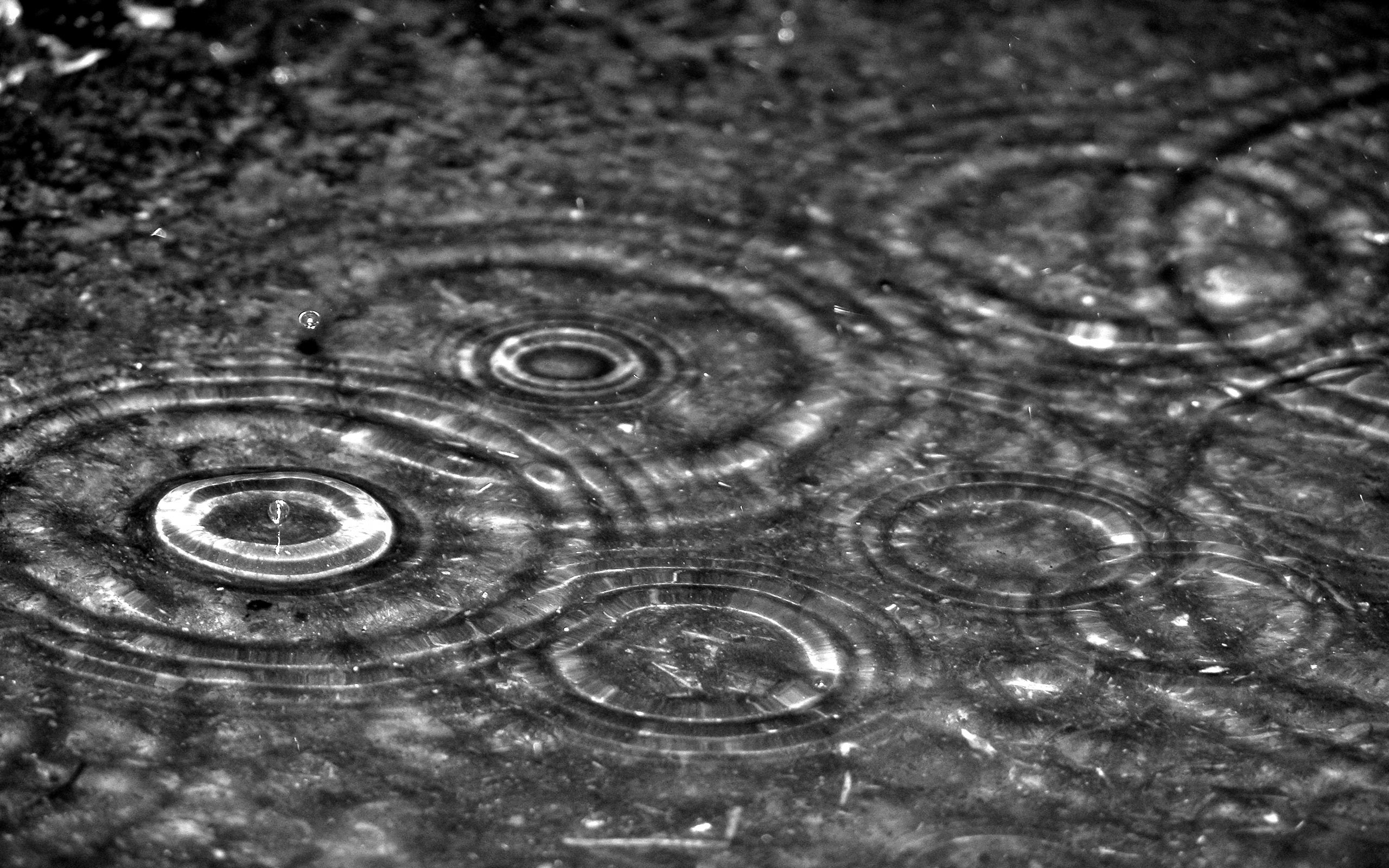 Res: 2560x1600, Image: Rain drops wallpapers and stock photos. Â«