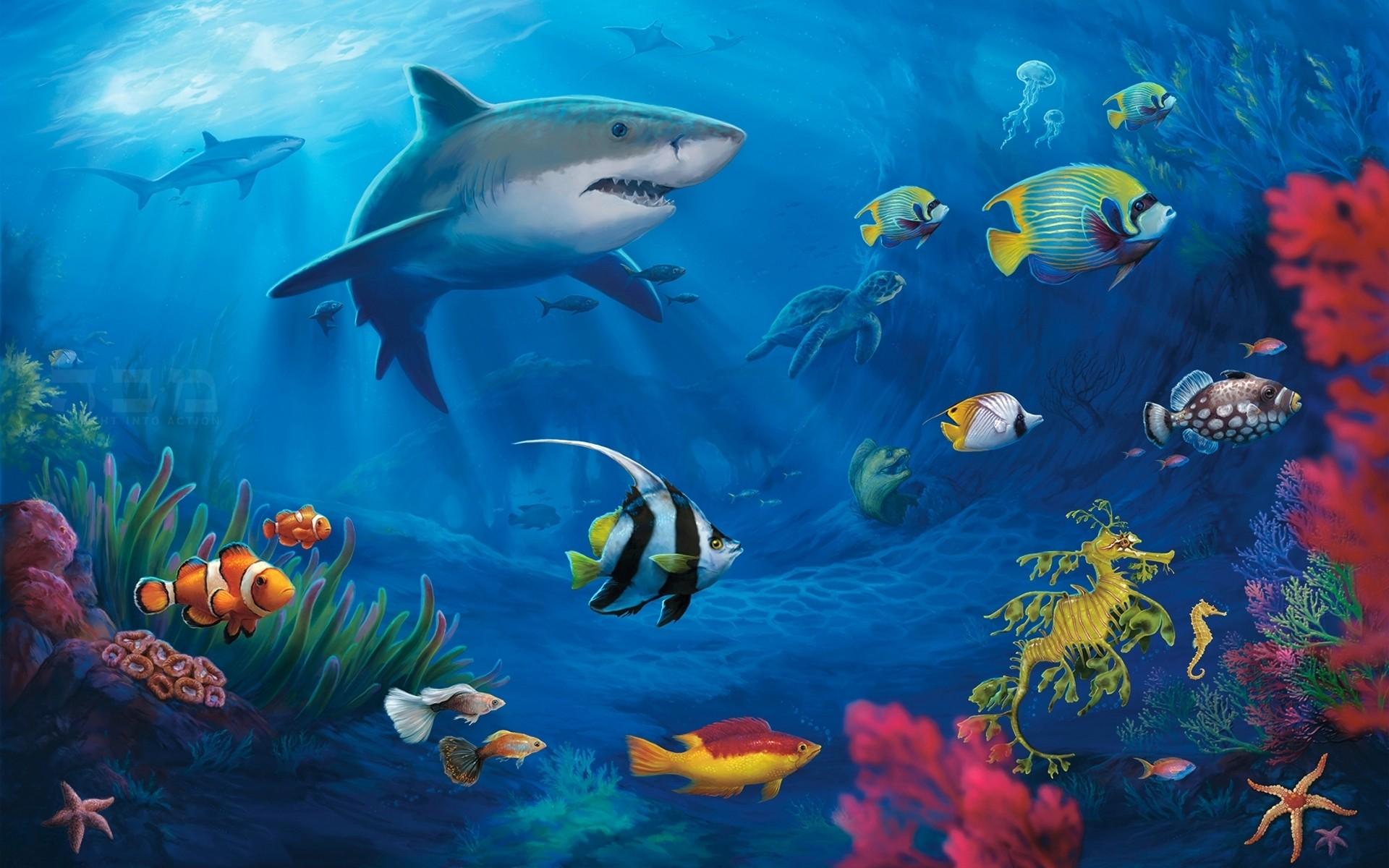 Res: 1920x1200, Wallpaper Fish