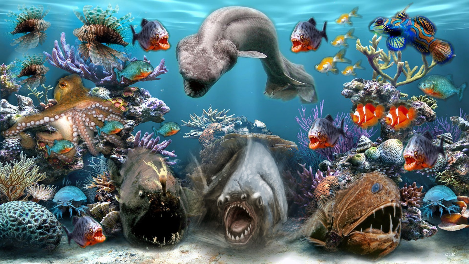 Res: 1920x1080, Awesome Ocean Sea Animals Collection Wallpaper
