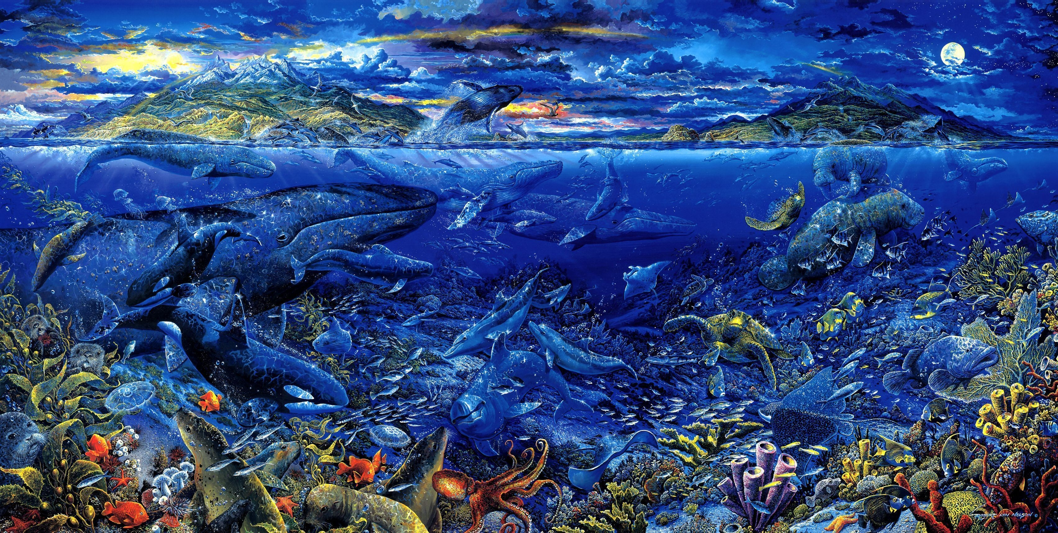 Res: 3405x1718, 76 Sea Life HD Wallpapers | Backgrounds - Wallpaper Abyss
