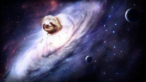 Sloth Desktop wallpapers