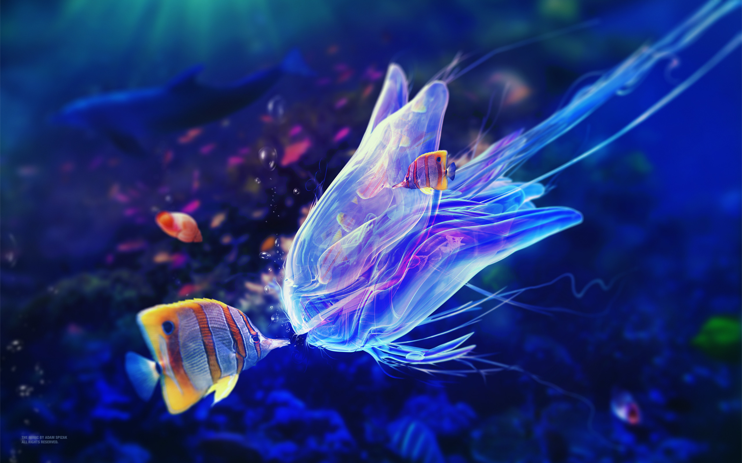 Res: 2560x1600, Author: Adam Spizak. Tags: Underwater Mimic. Description: Download  Underwater Mimic HD wallpaper ...