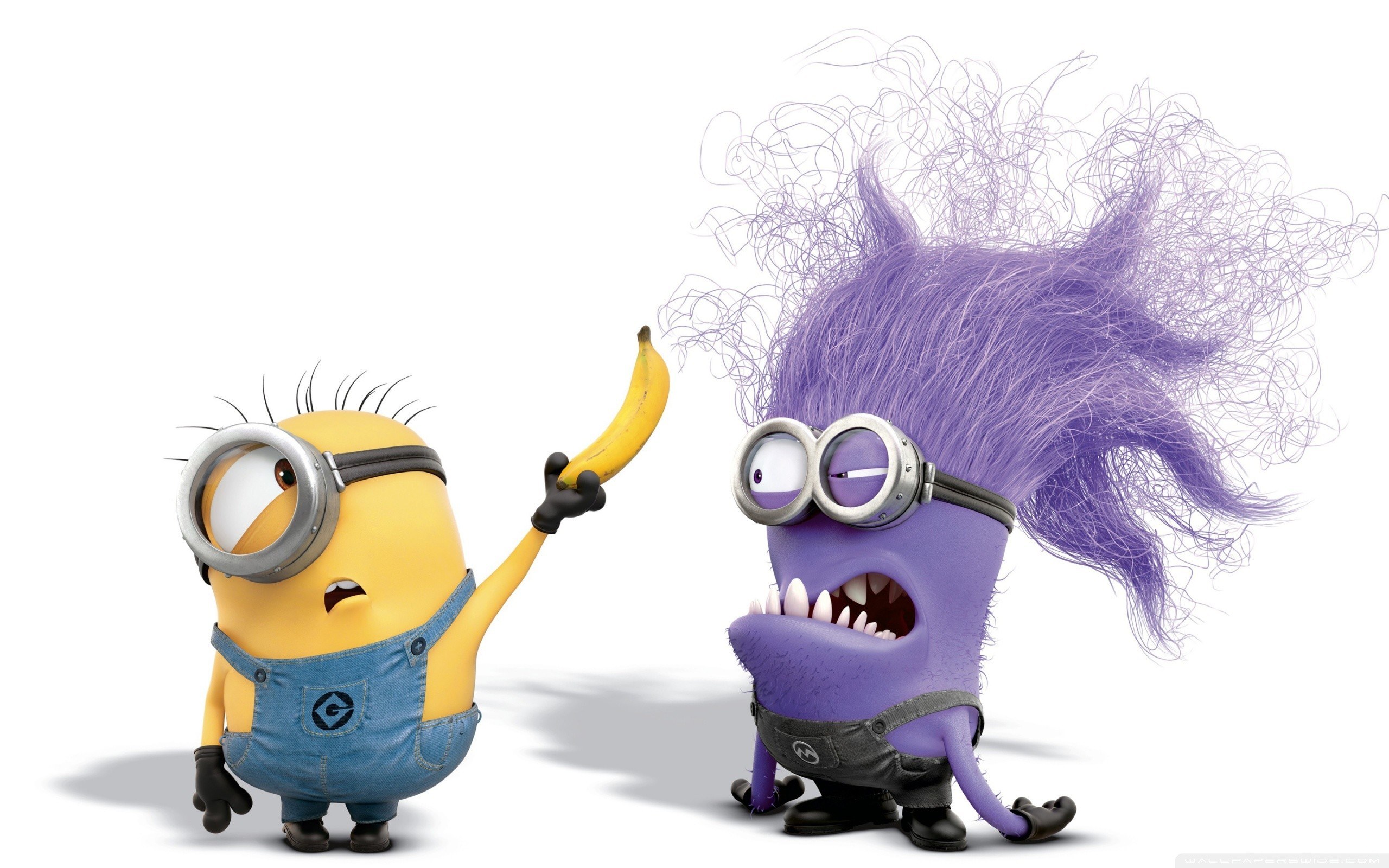 Res: 2560x1600, minion wallpaper purple