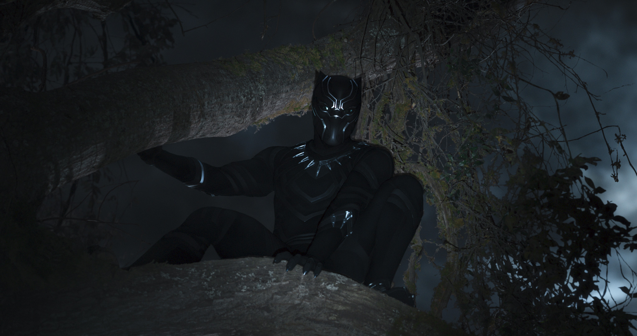 Res: 2048x1080, Black Panther/T'Challa (Chadwick Boseman