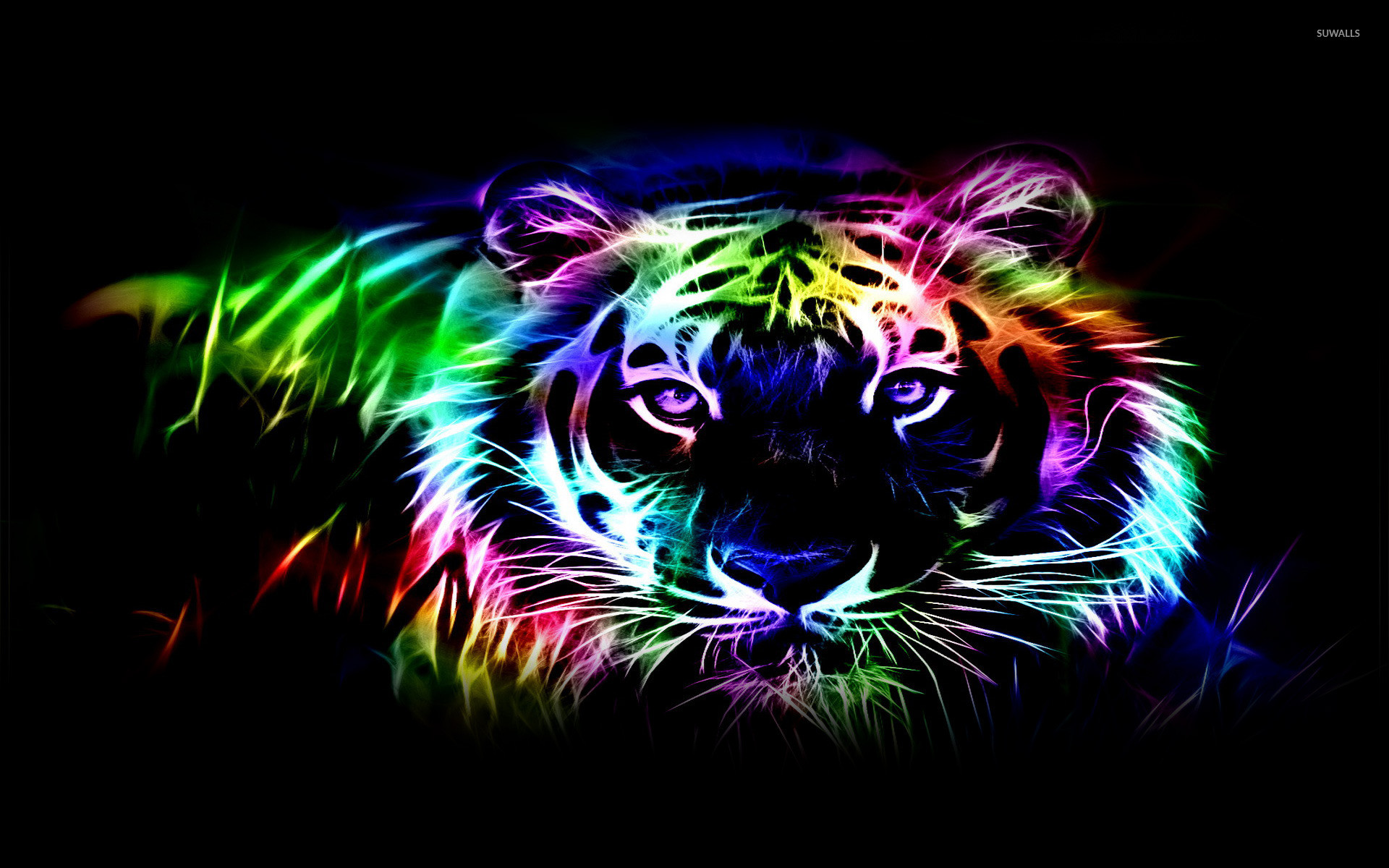 Res: 1920x1200, Neon tiger outline wallpaper
