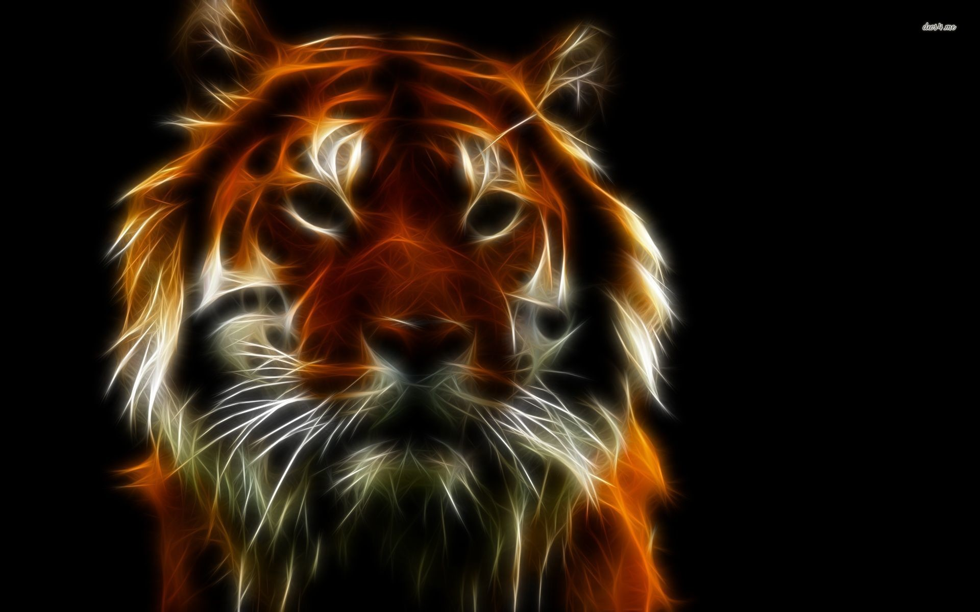Res: 1920x1200, ... Neon tiger shining in the darkness wallpaper  ...