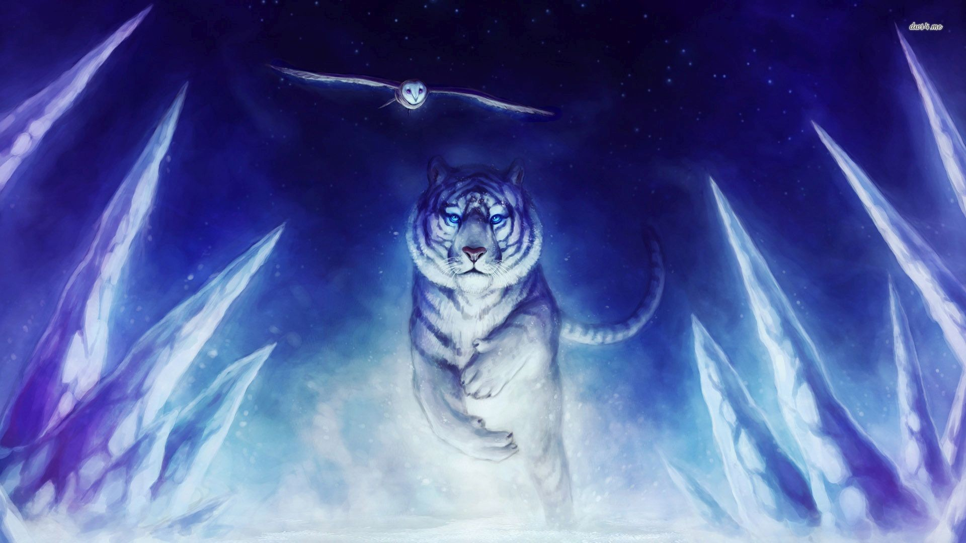 Res: 1920x1080, ... White Tiger wallpaper  ...