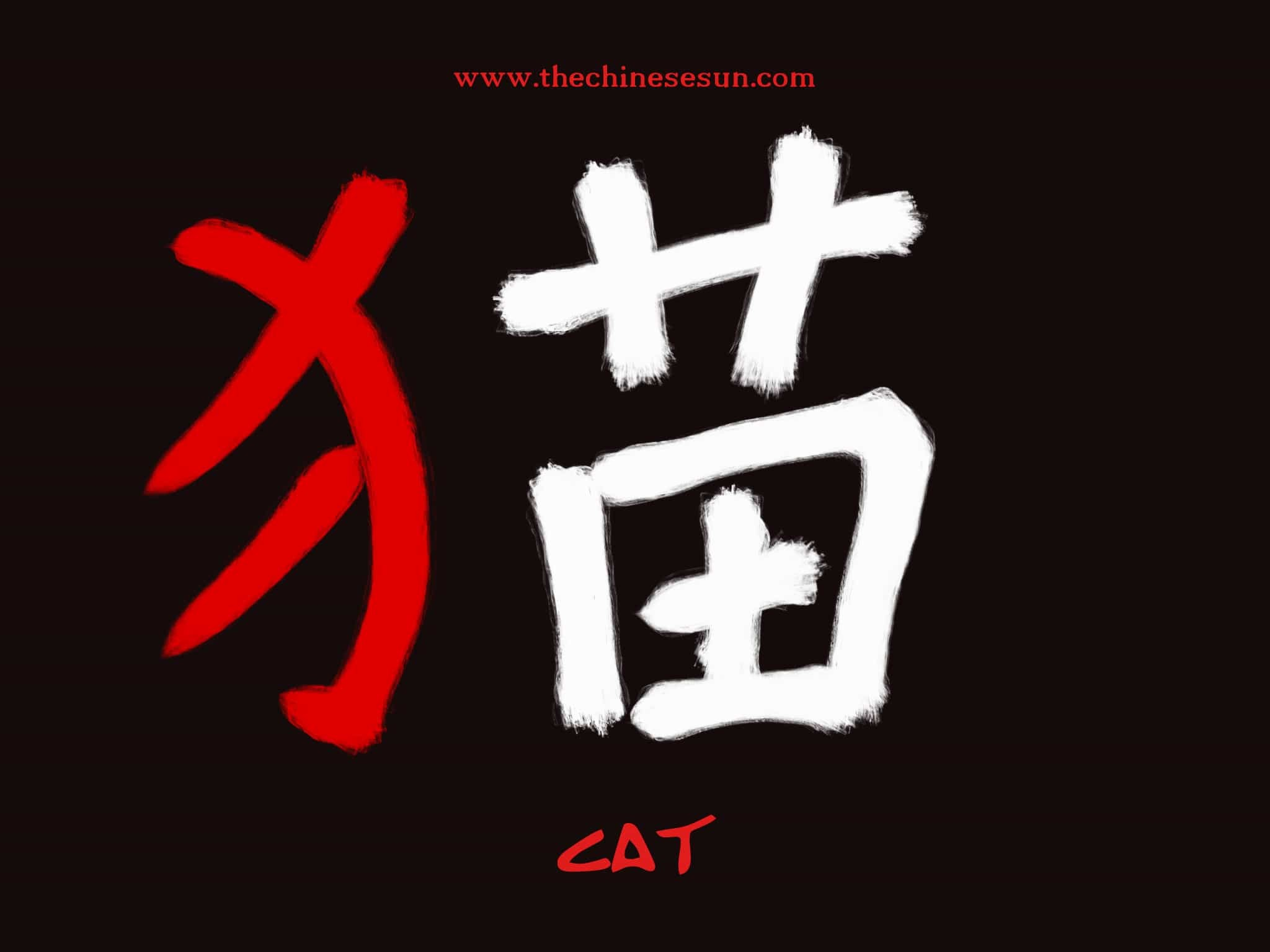 Res: 2048x1536, Basic Chinese Radicals Cat In Characters Writing