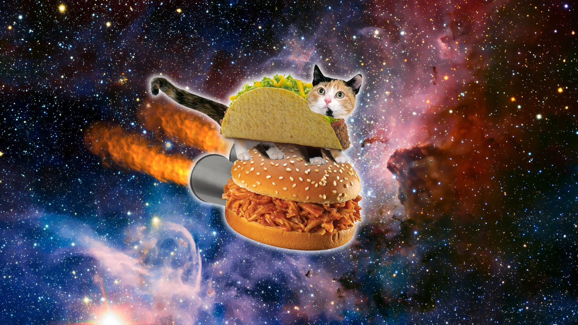 Res: 1920x1080, Space Cat Wallpaper Mobile