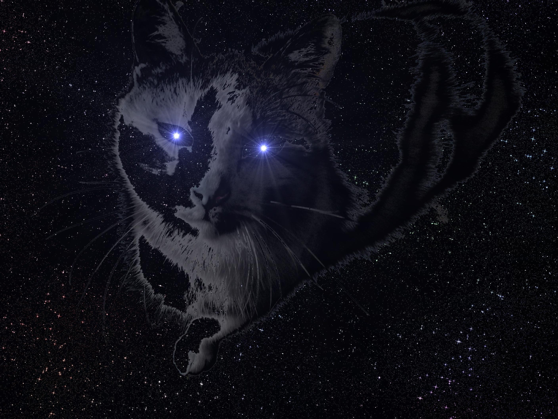 Res: 2816x2112, Sci Fi - Artistic Cat Wallpaper