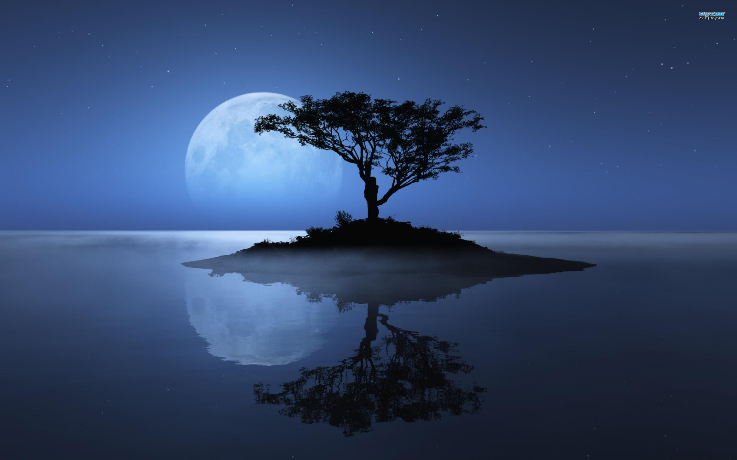 Res: 2560x1600, moon shadow on river wallpaper download