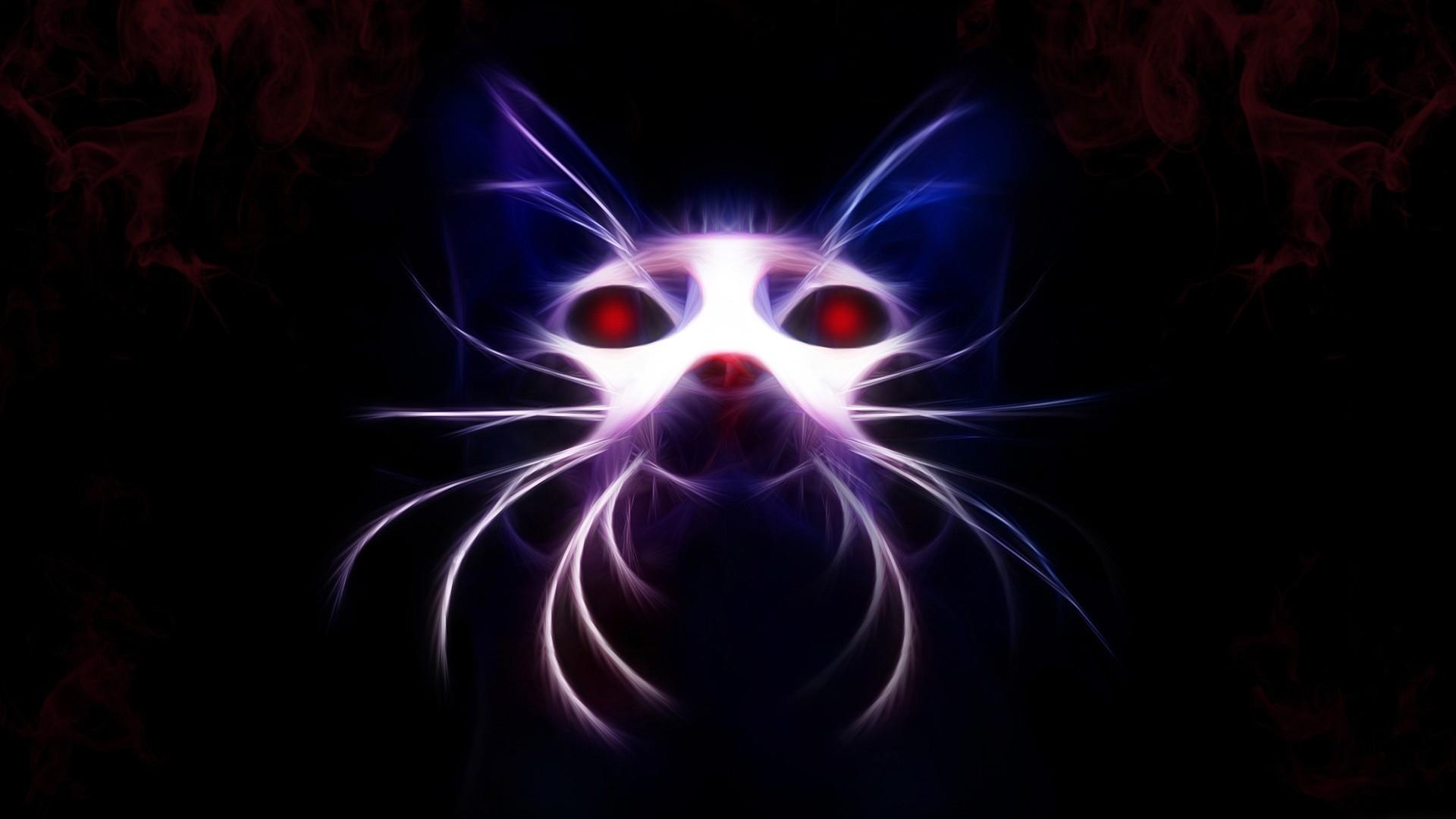 Res: 1920x1080, cat wallpaper light