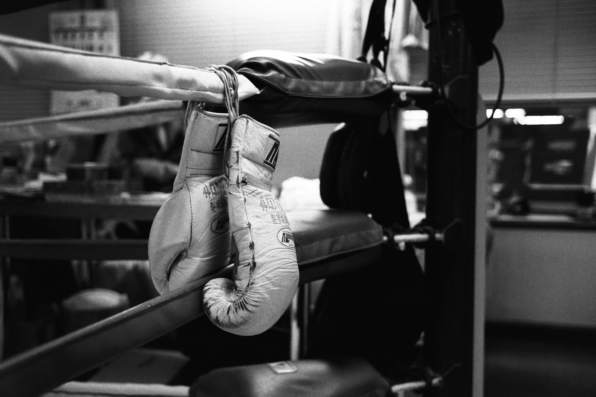 Res: 2048x1365, boxing gloves bw wallpaper download