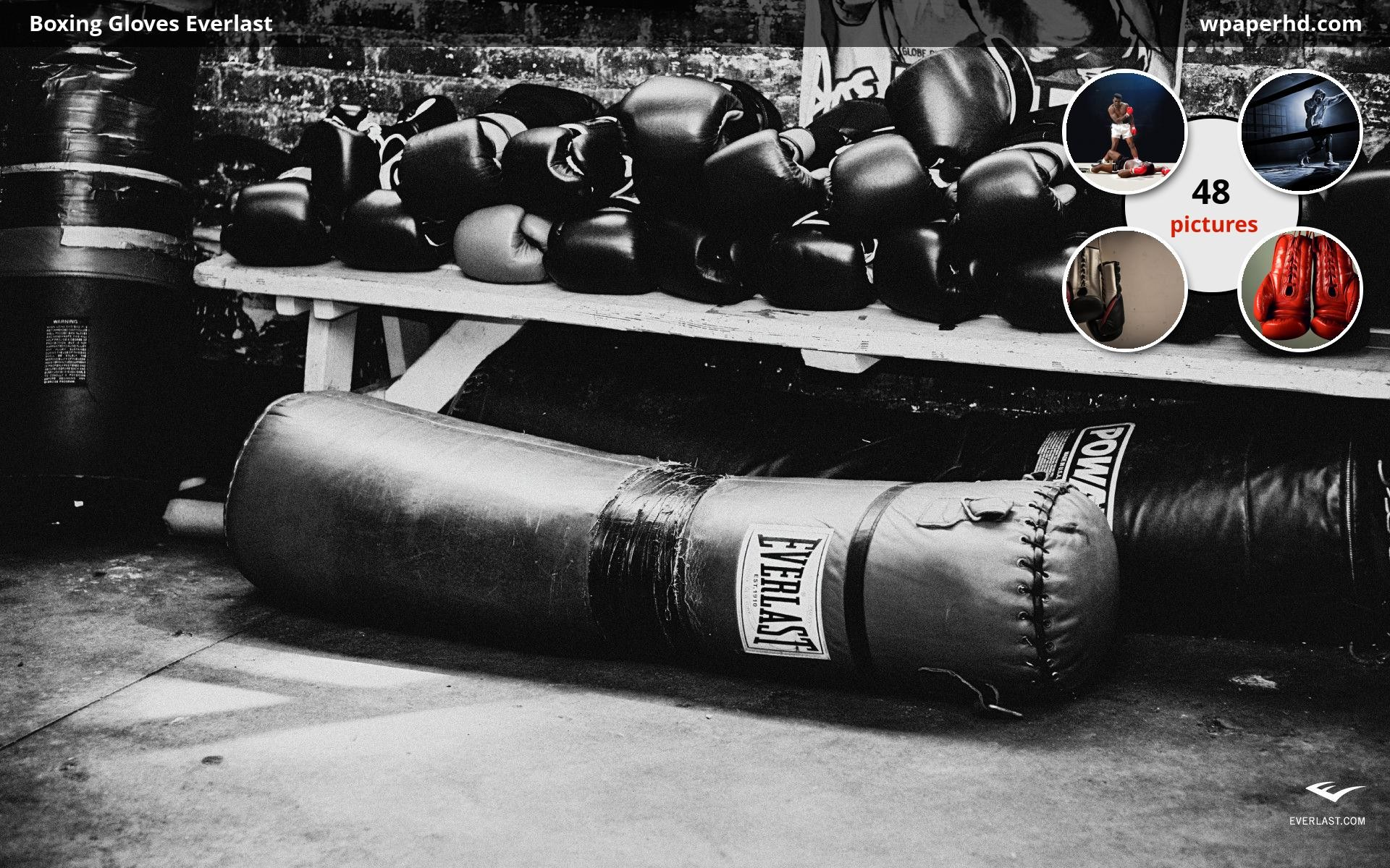 Res: 1920x1200, You are on page with Boxing Gloves Everlast wallpaper, where you can  download this picture in Original size and ...
