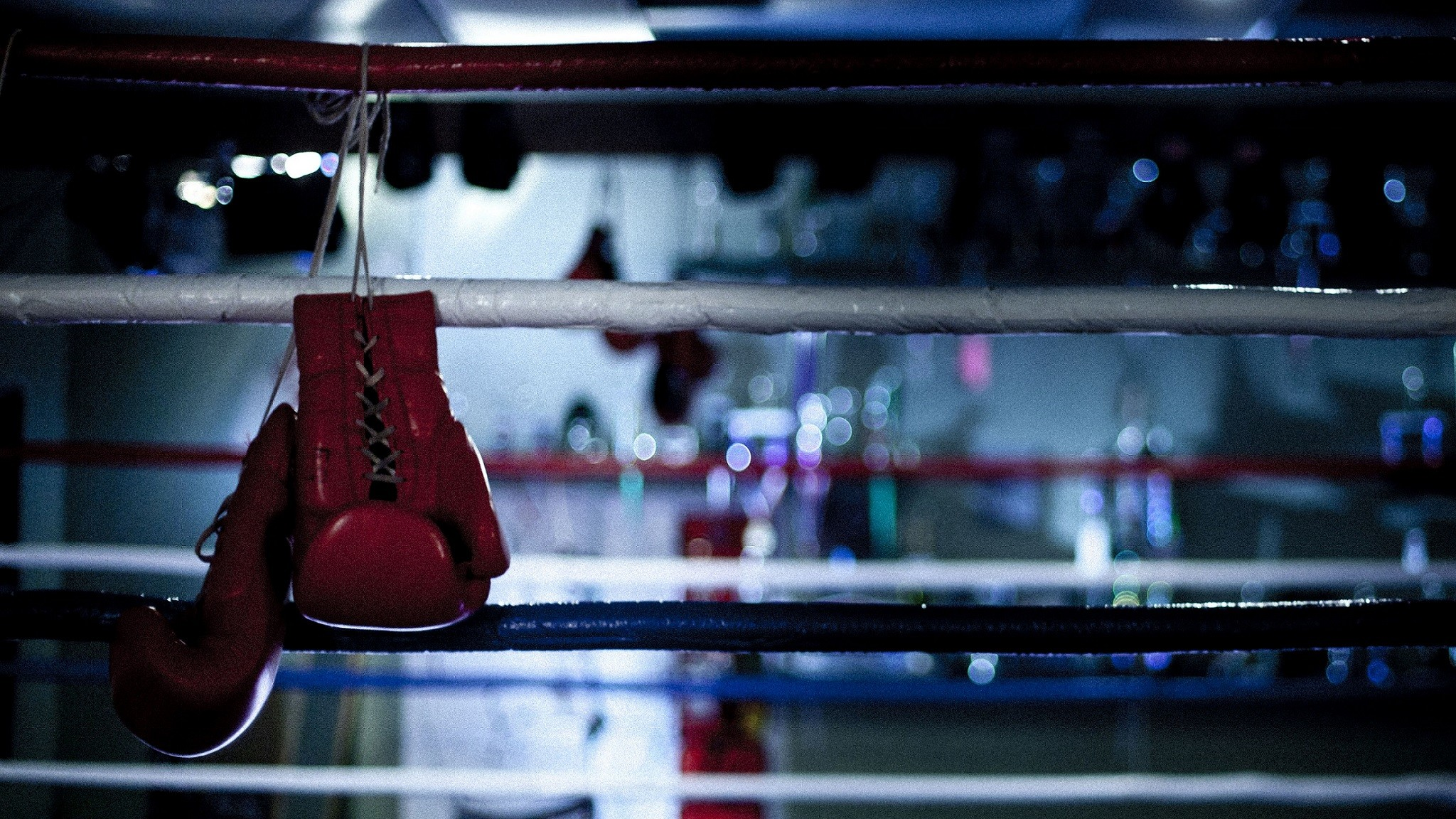 Res: 2048x1152, Save Boxing Gloves Wallpaper in HD Resolutions