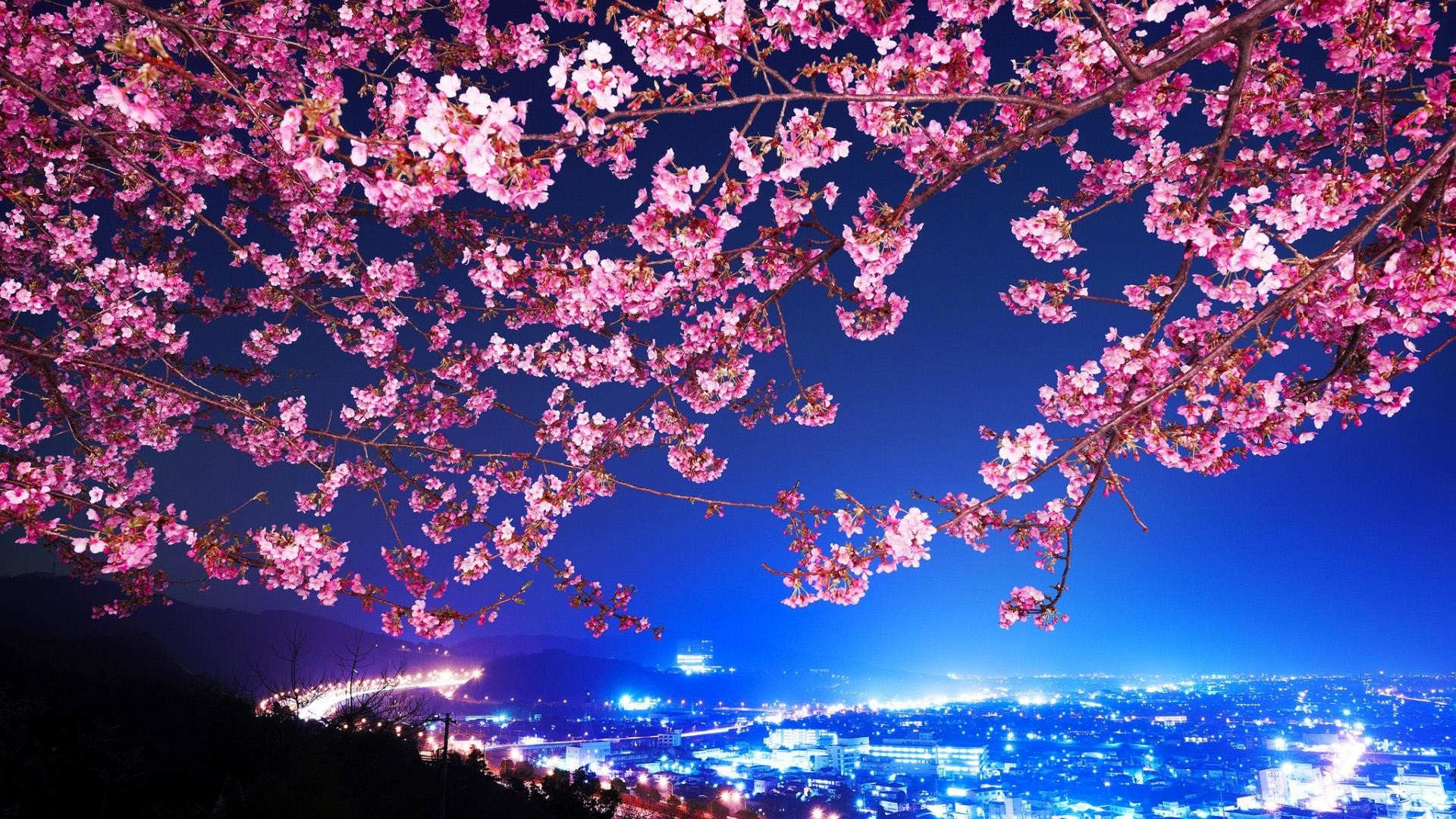 Res: 1920x1080, Amazing Japan Scenery Desktop Background.
