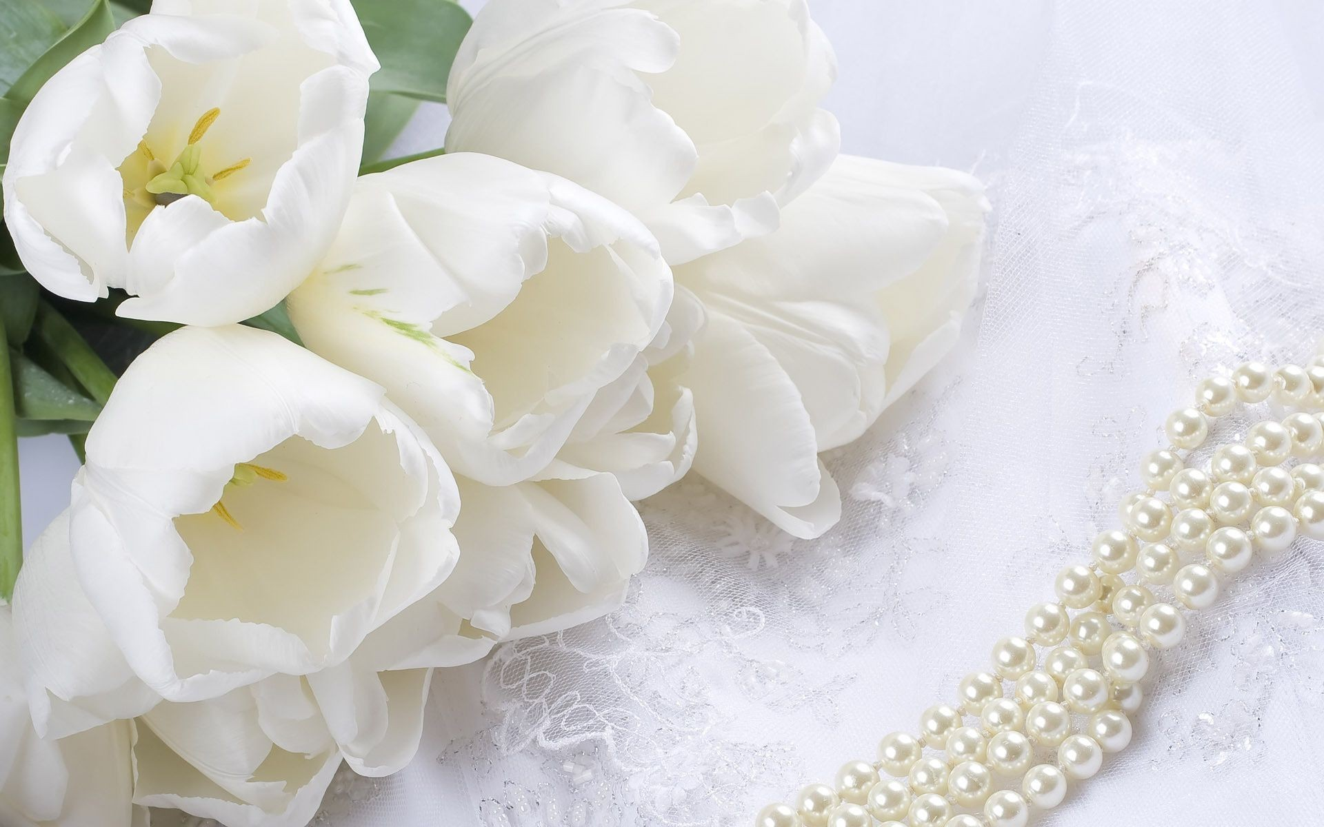 Res: 1920x1200, Flowers pearls white lace tulips bouquet beads. Android wallpapers for free.