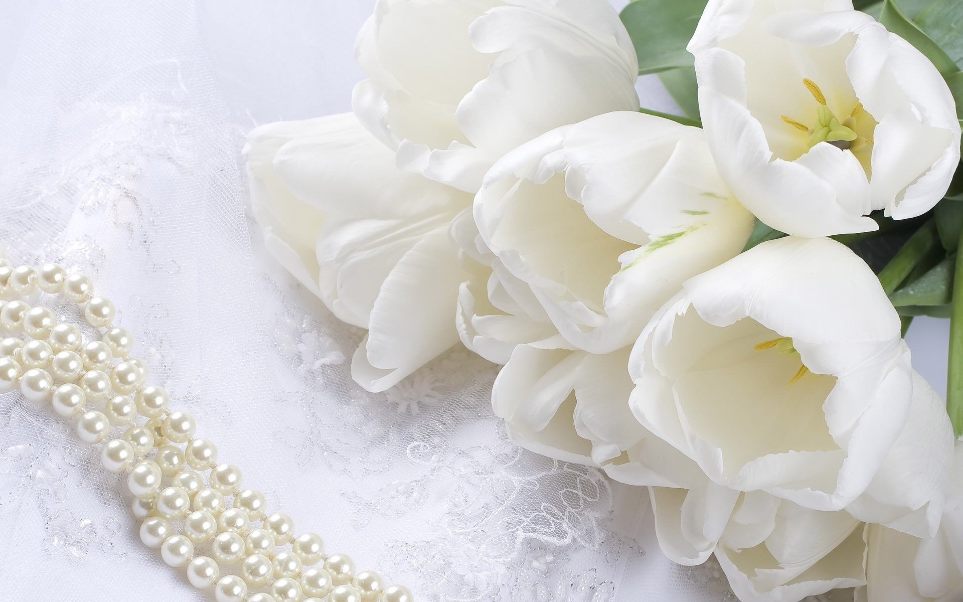 Res: 1920x1200, flower tulips white lace beads pearl bouquet