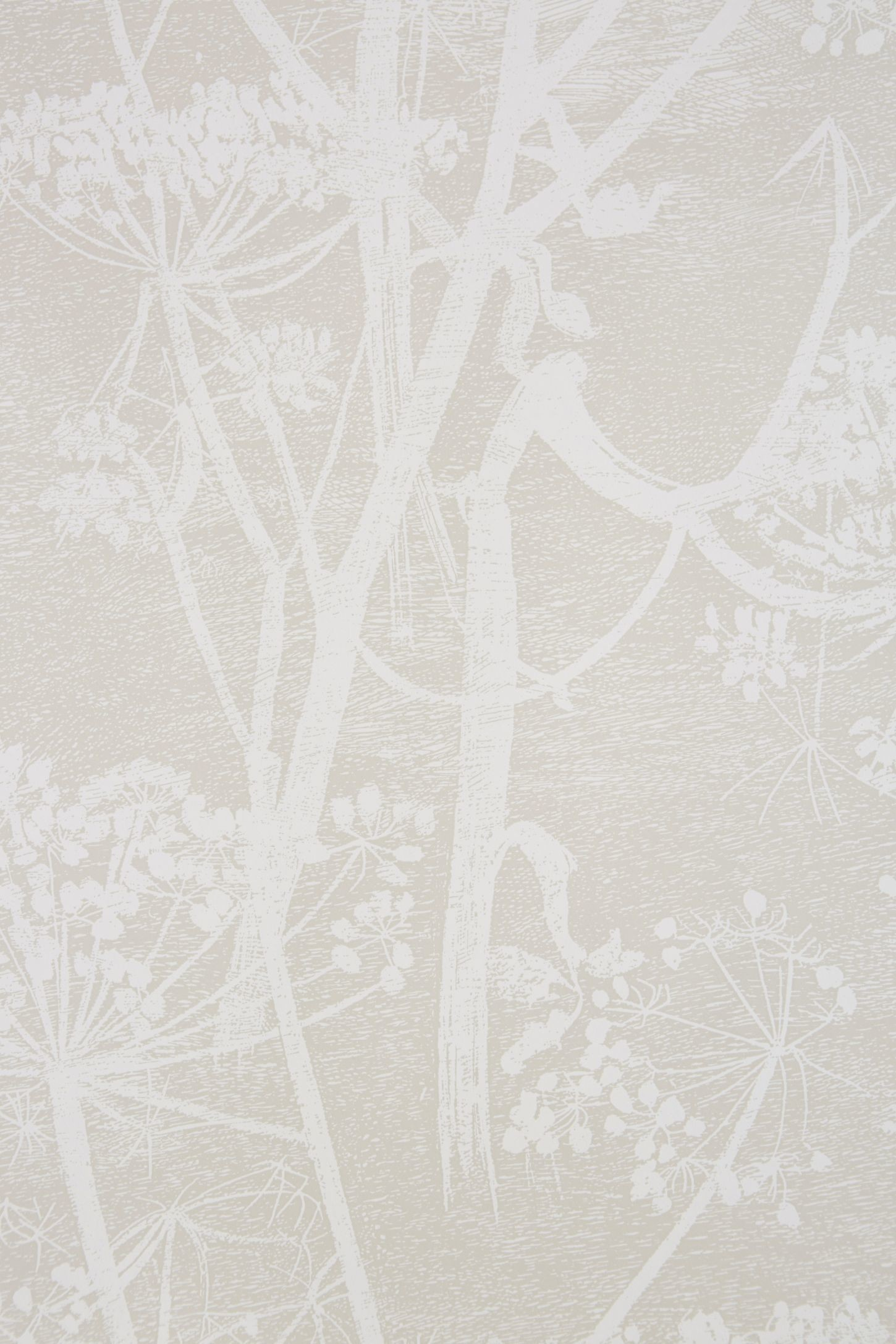 Res: 1450x2175, Slide View: 3: Queen Anne's Lace Wallpaper