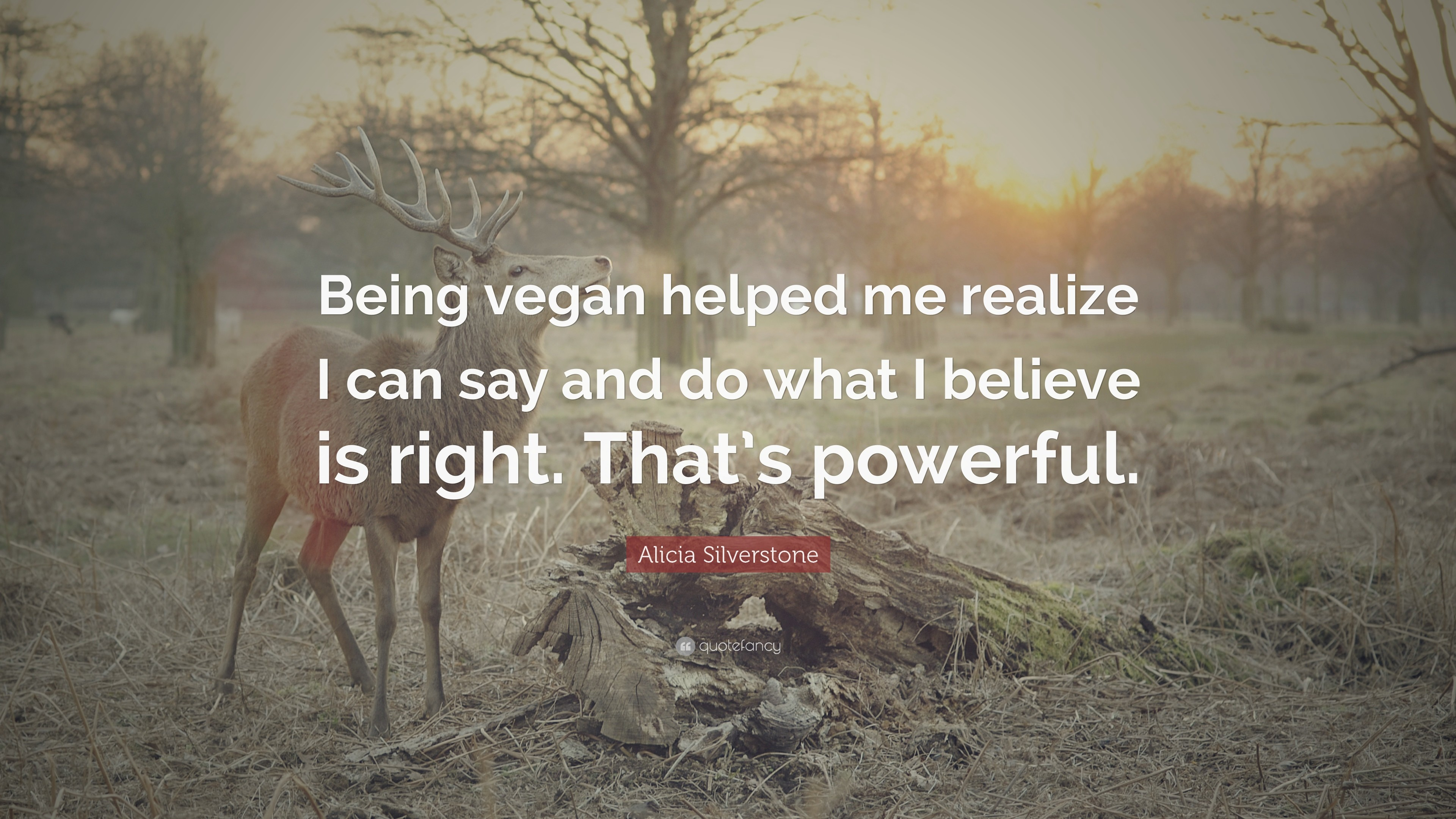 "Res: 3840x2160, Quotes About Veganism: ""Being vegan helped me realize I can say and do what"