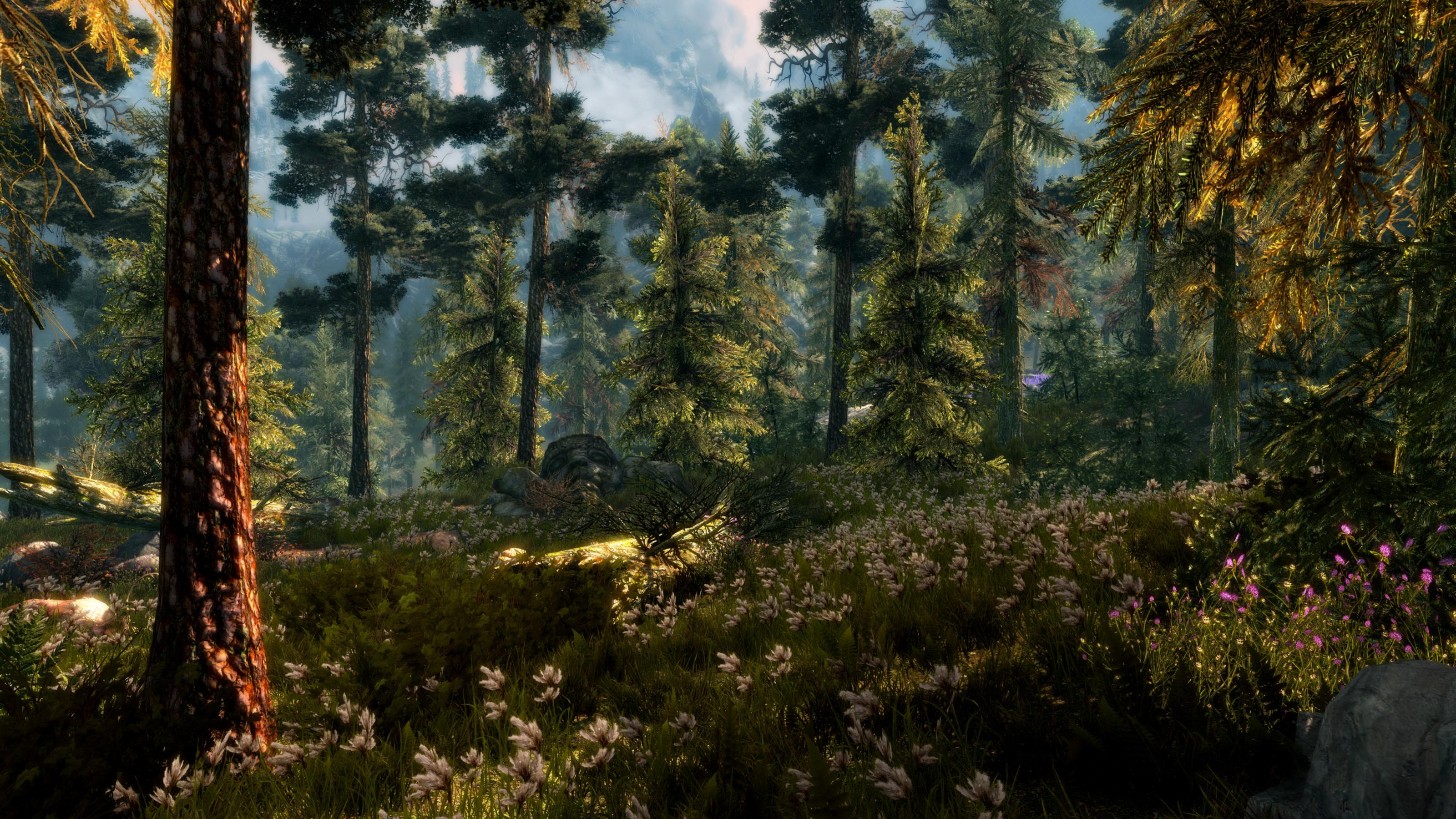 Res: 3200x1800, Video Game - The Elder Scrolls V: Skyrim Earth Forest Spring Tree Green  Flower Wallpaper