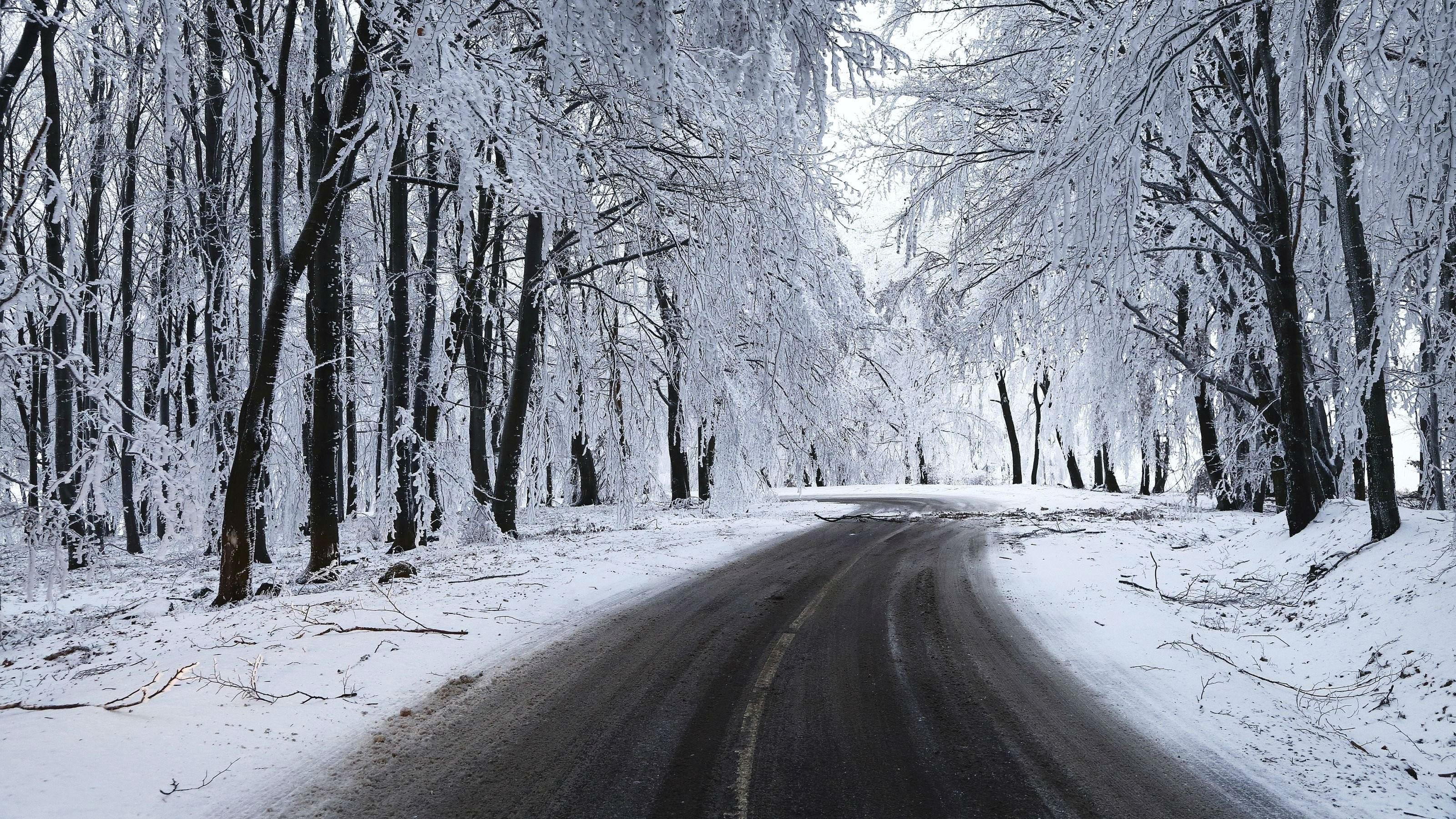 Res: 3200x1800, Man Made - Road Winter Snow Tree Wallpaper
