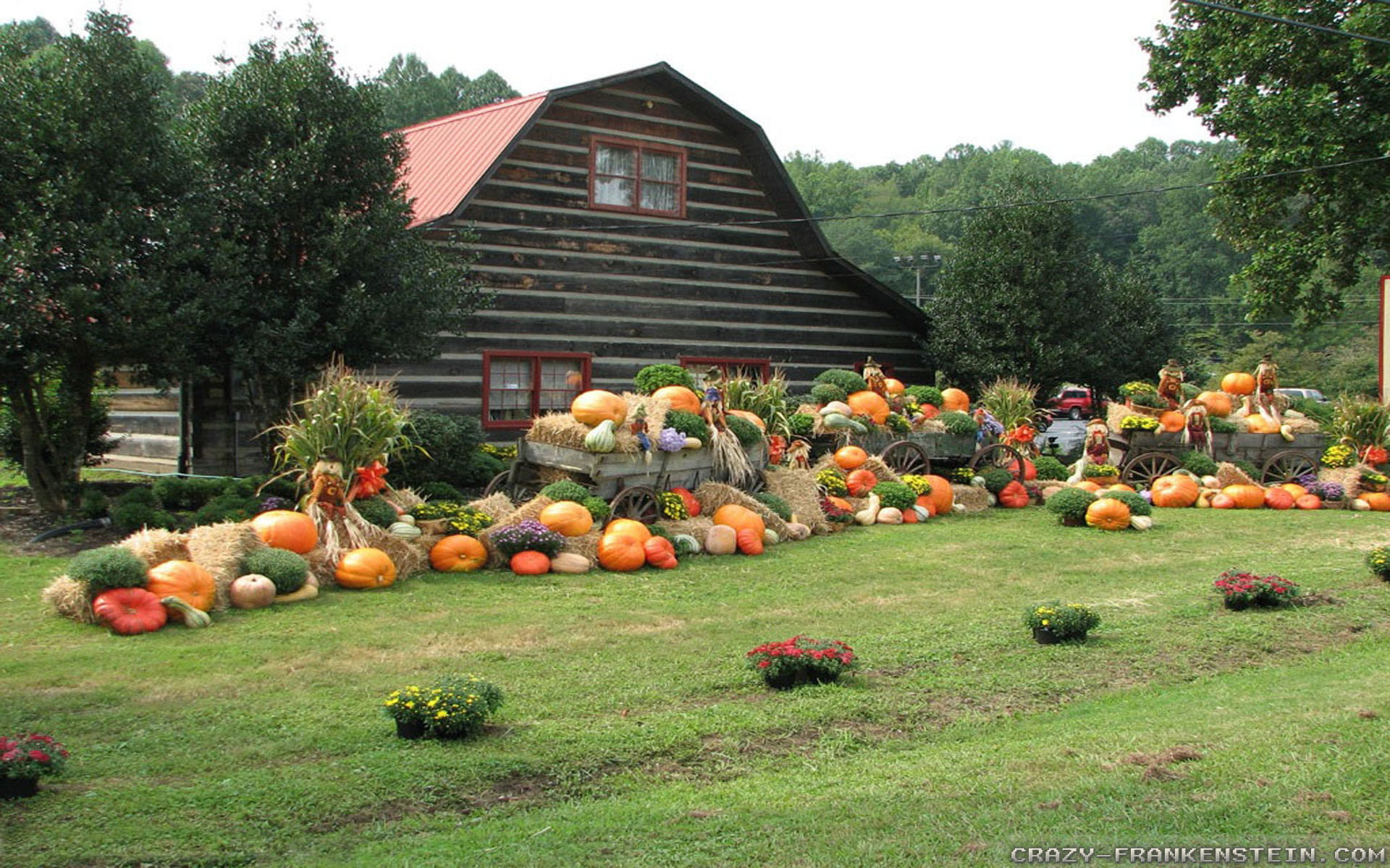 Res: 1920x1200, Wallpaper: Thanksgiving day scene wallpapers. Resolution: 1024x768 |  1280x1024 | 1600x1200. Widescreen Res: 1440x900 | 1680x1050 |