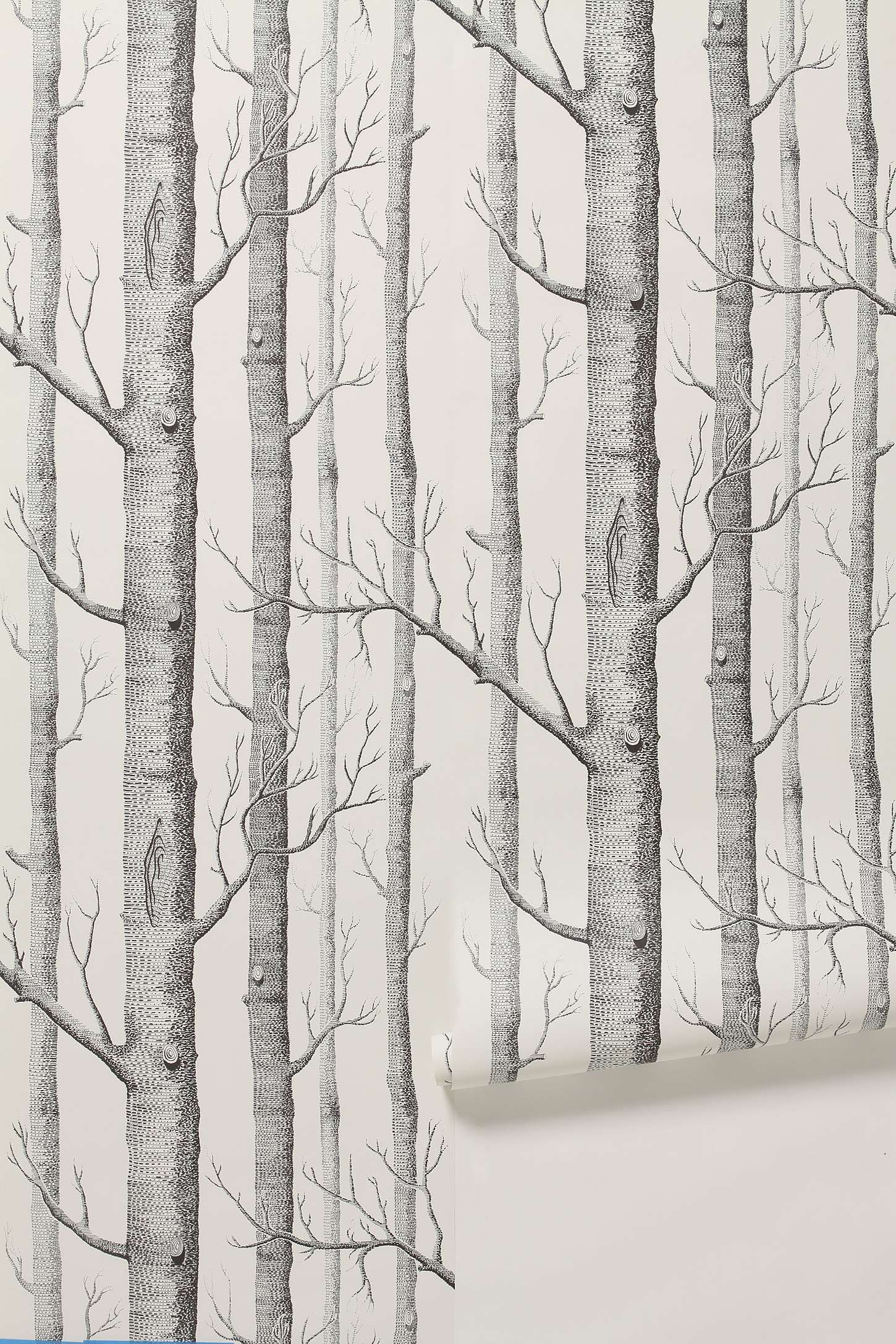 Res: 1450x2175, birch tree wallpaper -- I think this might be neat in a small half guest  bath... Maybe.
