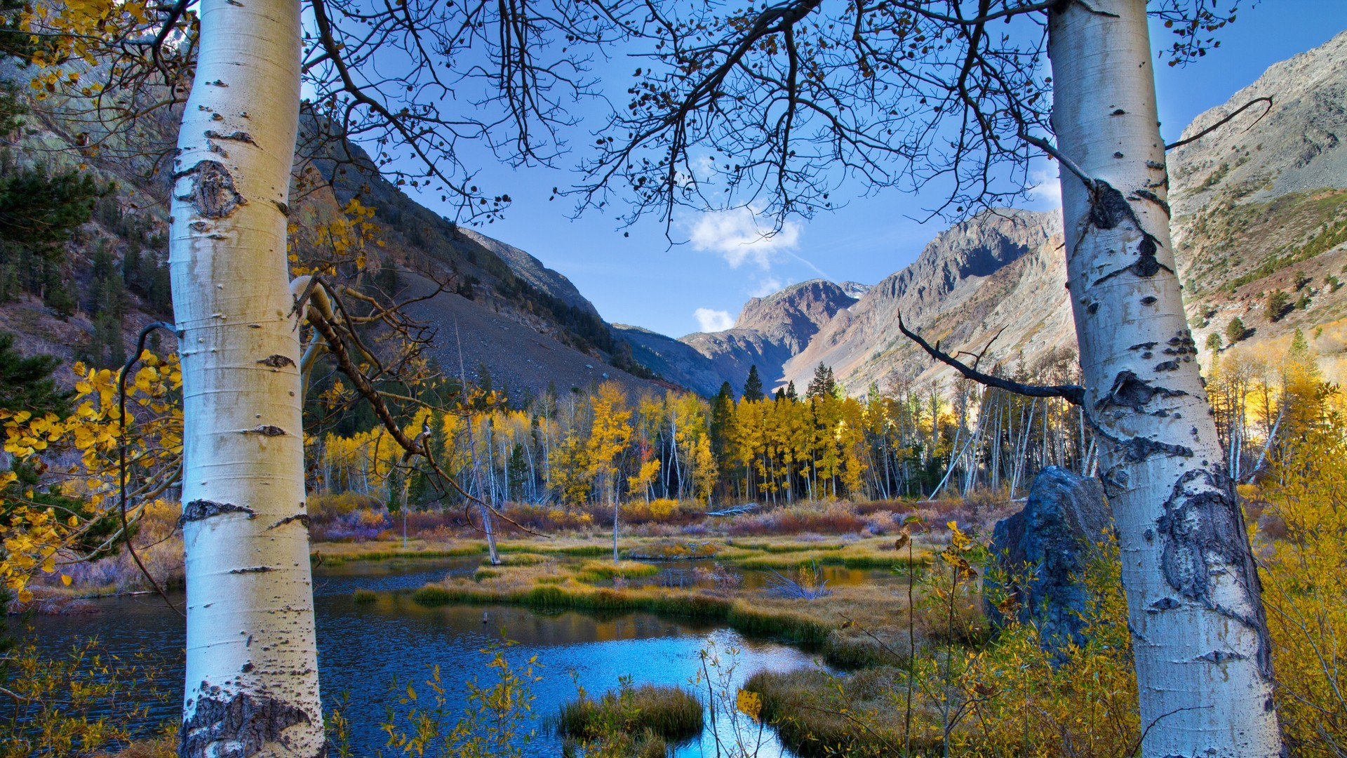 Res: 1920x1080, River Trees Autumn Birch Valley Mountains Forest Nature Wallpapers