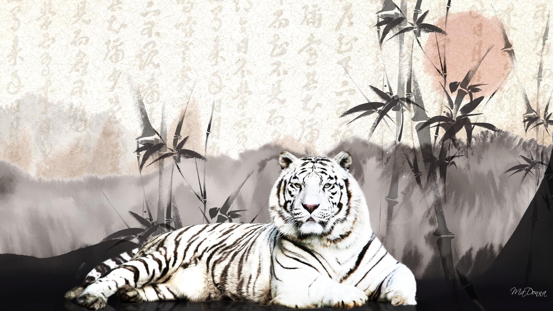Res: 1920x1080, Oriental White Tiger