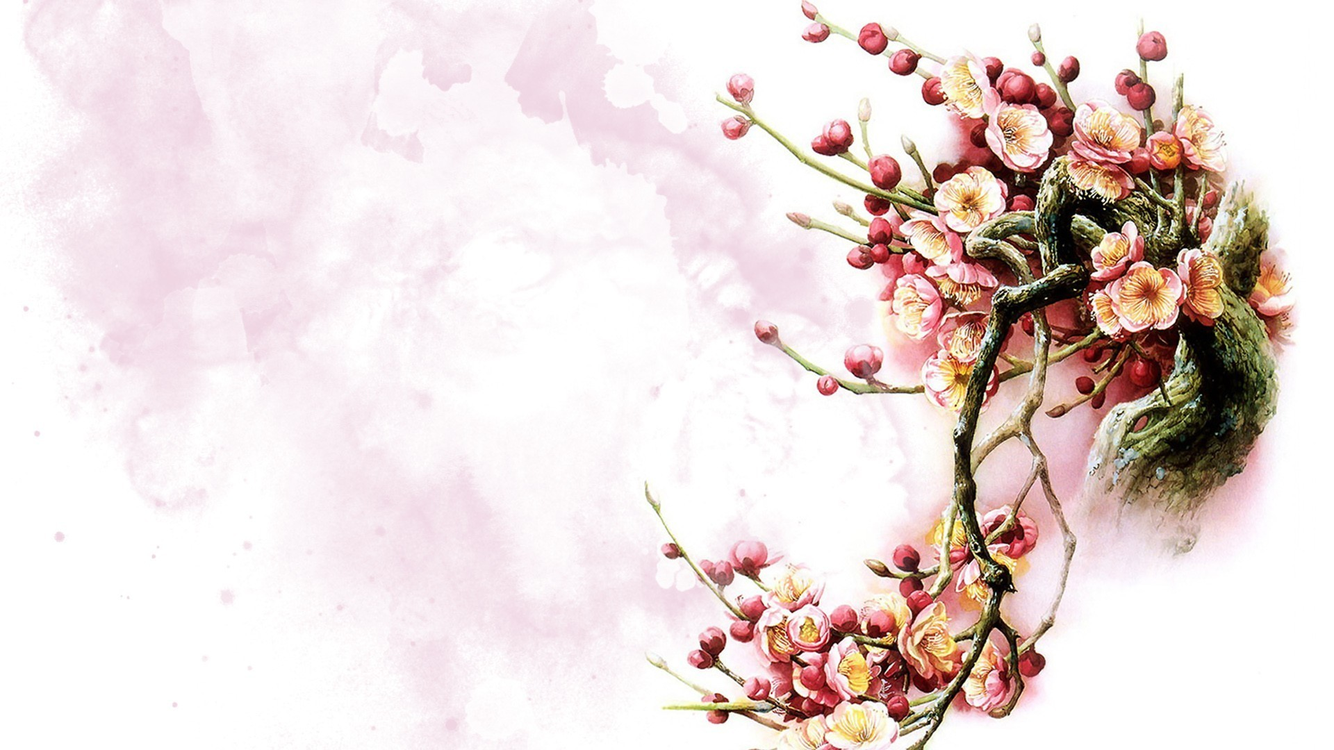 Res: 1920x1080, Oriental Painting Fleur Flower Blossoms Watercolor Pink Chinese Spring  Floral Tree Sakura Flowers Wallpaper Large Size Detail