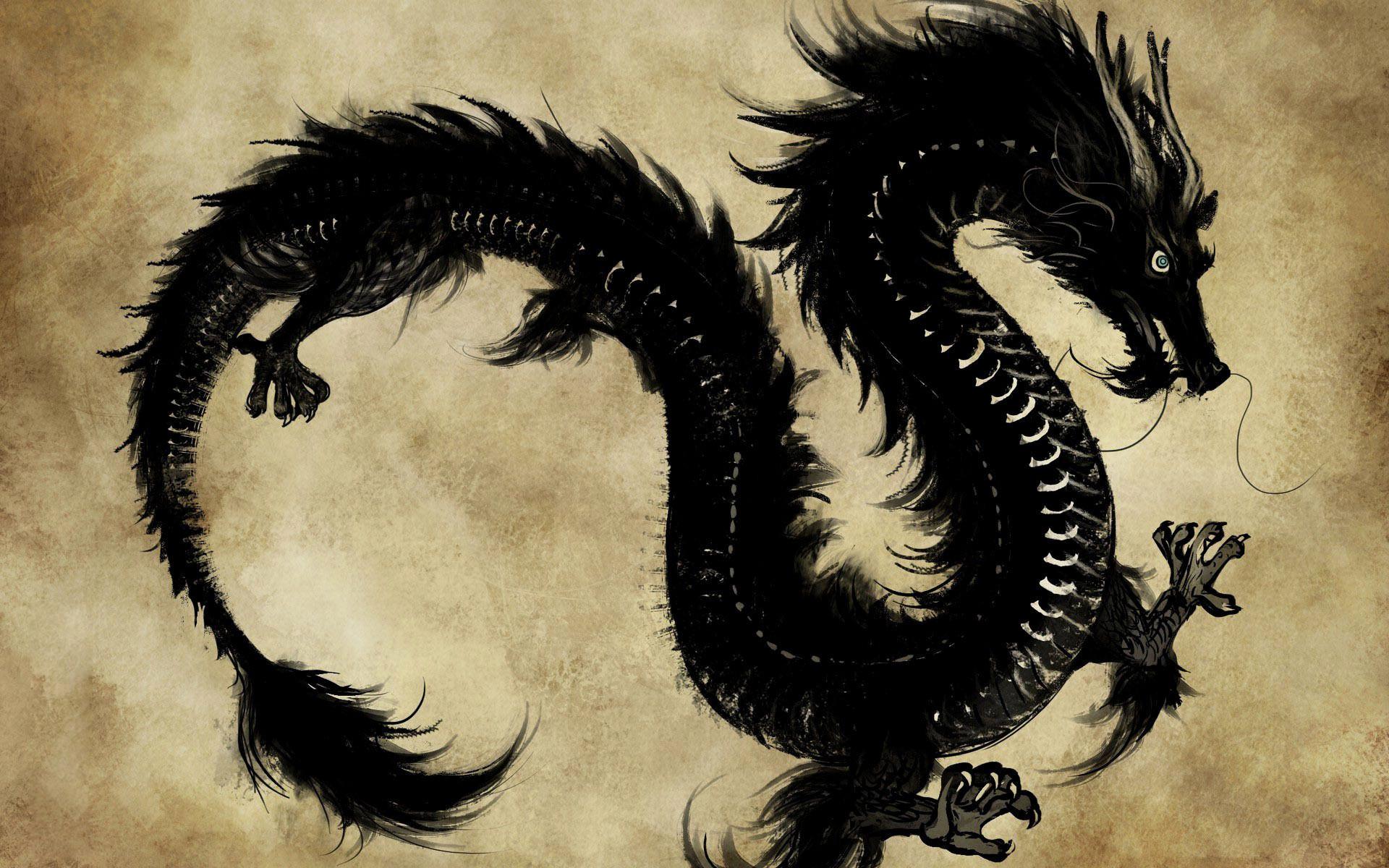 Res: 1920x1200, Dragon Wallpapers New oriental Dragon Wallpaper Chinese Dragon Hd Wallpapers
